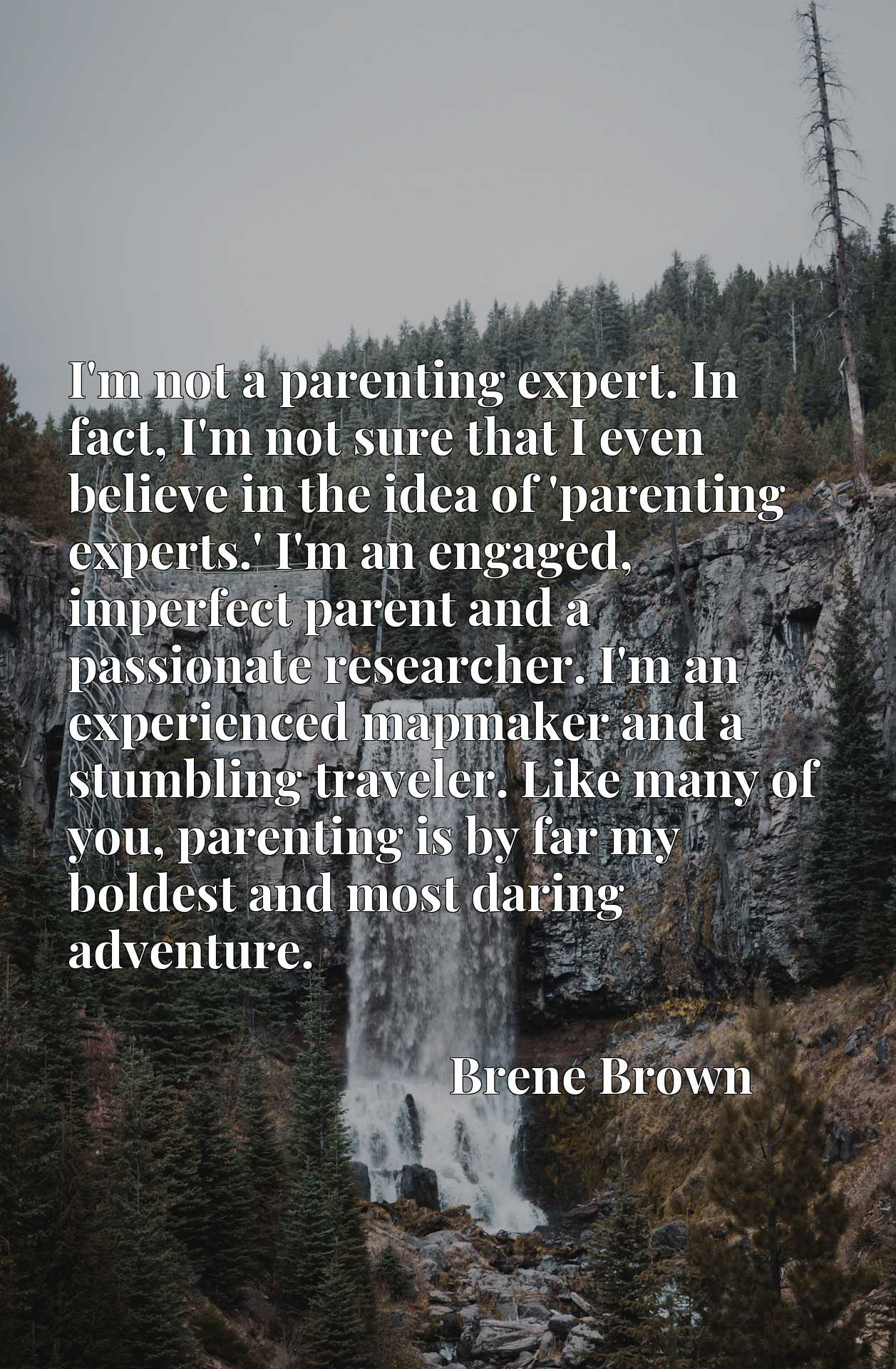 I'm not a parenting expert. In fact, I'm not sure that I even believe in the idea of 'parenting experts.' I'm an engaged, imperfect parent and a passionate researcher. I'm an experienced mapmaker and a stumbling traveler. Like many of you, parenting is by far my boldest and most daring adventure.