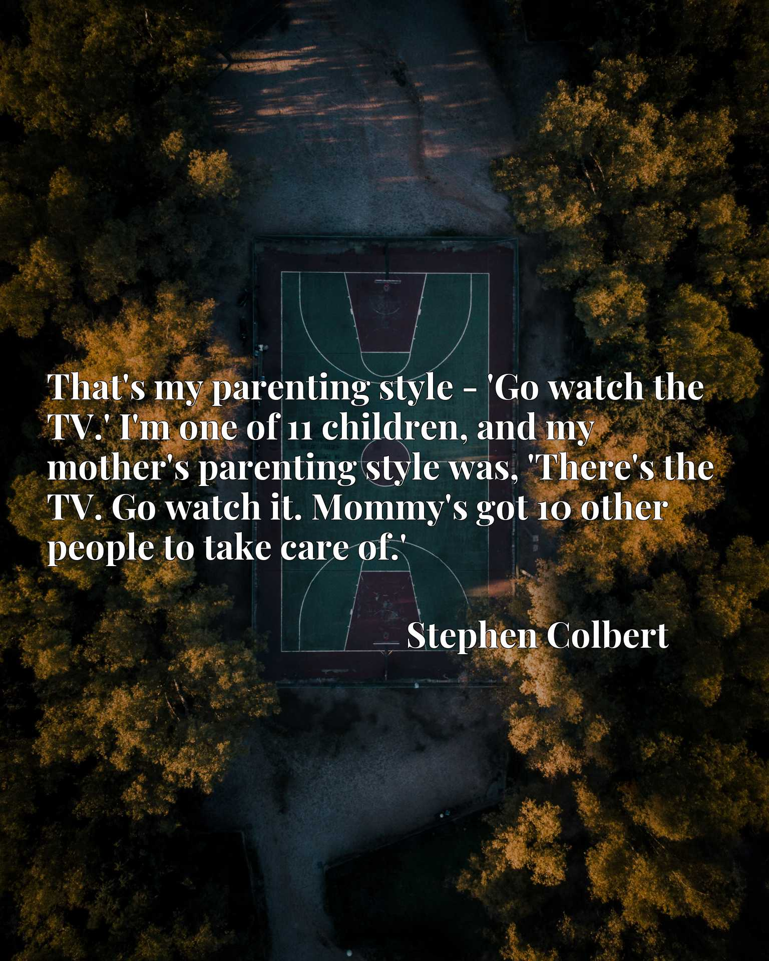 That's my parenting style - 'Go watch the TV.' I'm one of 11 children, and my mother's parenting style was, 'There's the TV. Go watch it. Mommy's got 10 other people to take care of.'