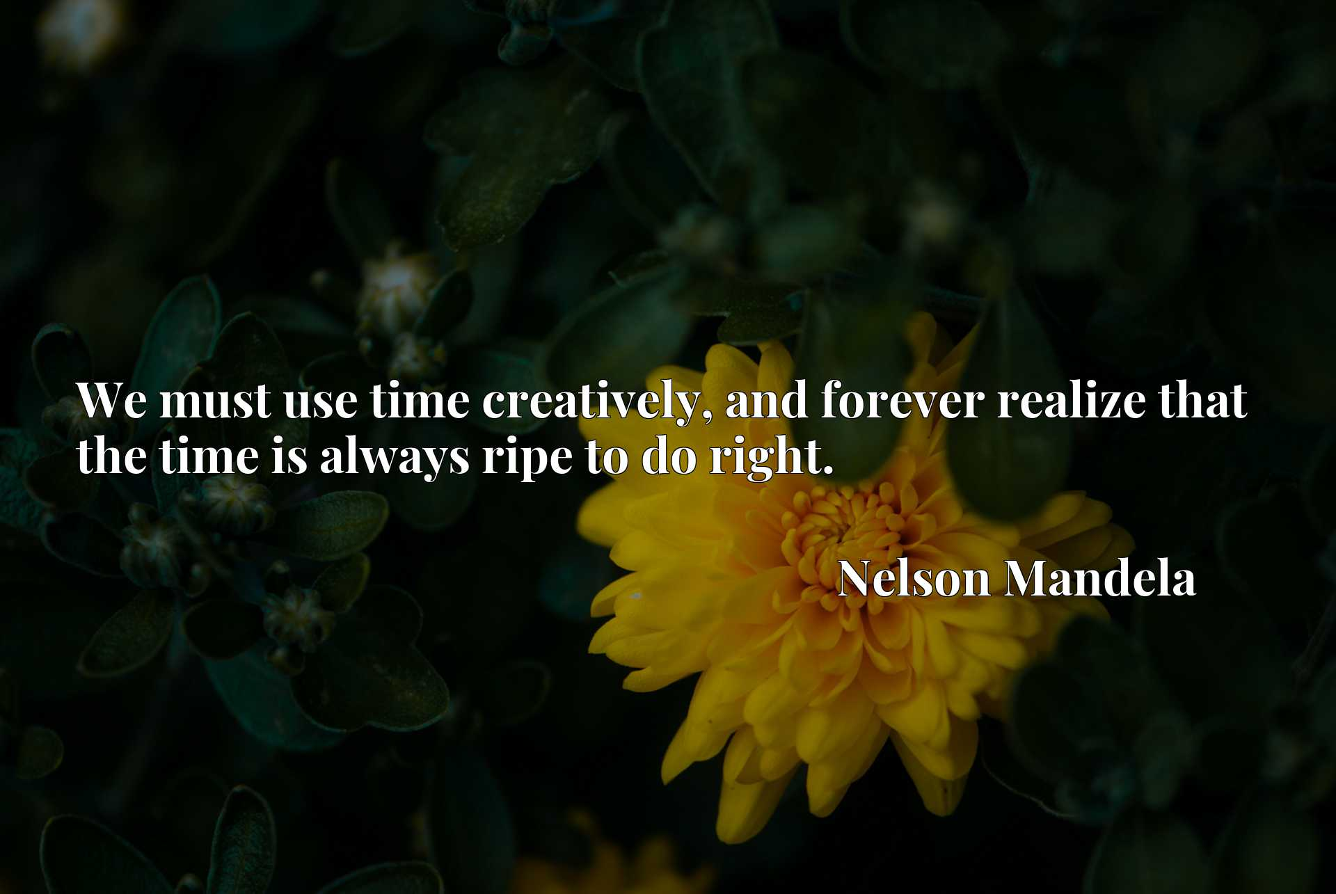 We must use time creatively, and forever realize that the time is always ripe to do right.