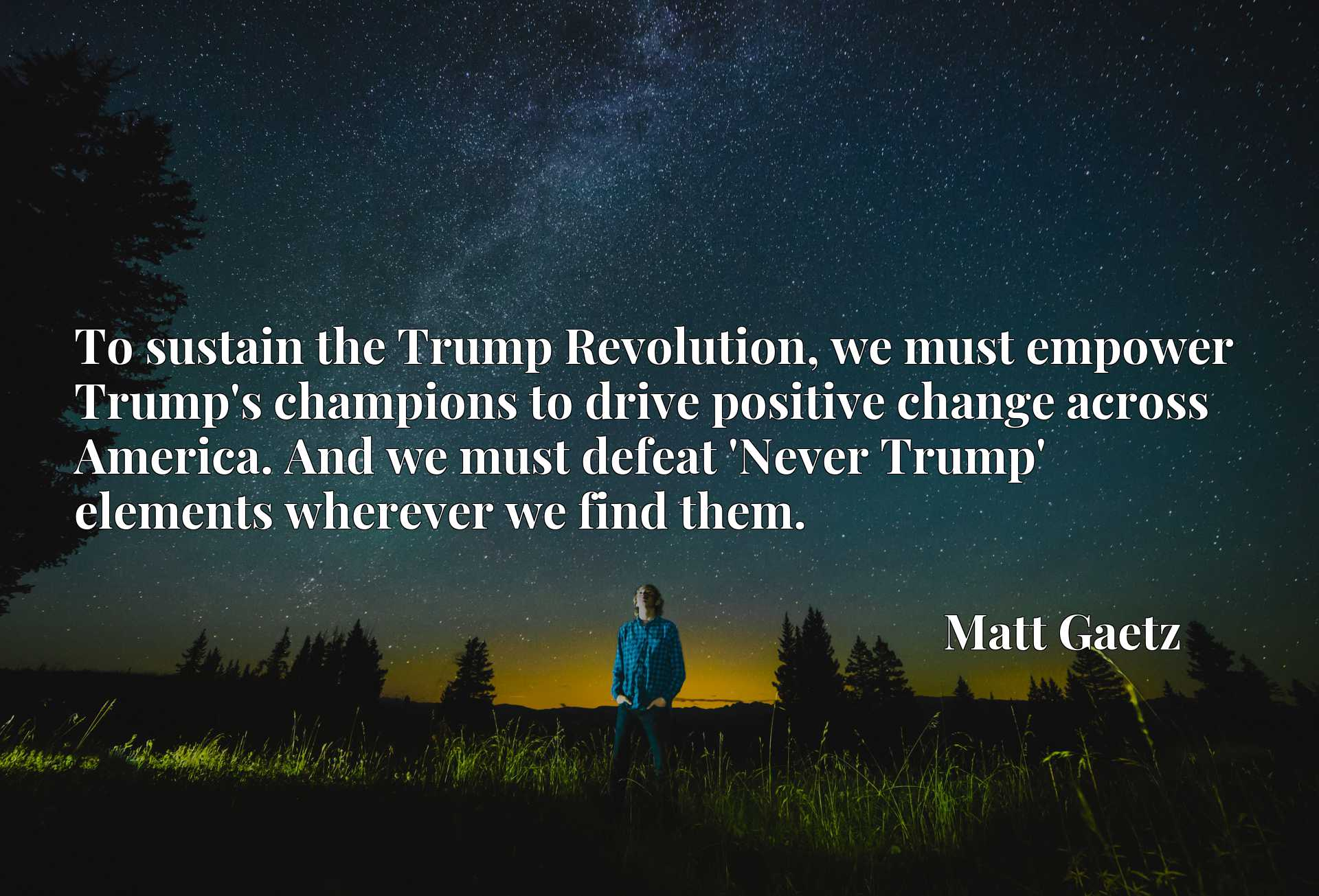 To sustain the Trump Revolution, we must empower Trump's champions to drive positive change across America. And we must defeat 'Never Trump' elements wherever we find them.