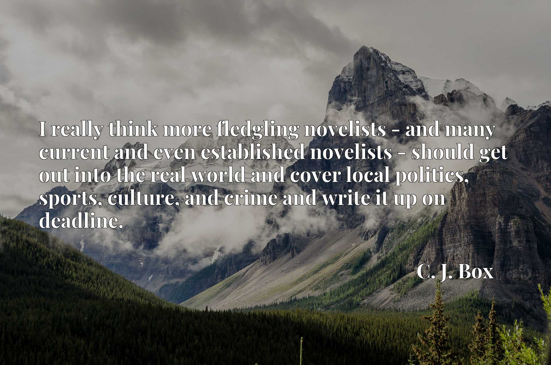 Quote Picture :I really think more fledgling novelists - and many current and even established novelists - should get out into the real world and cover local politics, sports, culture, and crime and write it up on deadline.