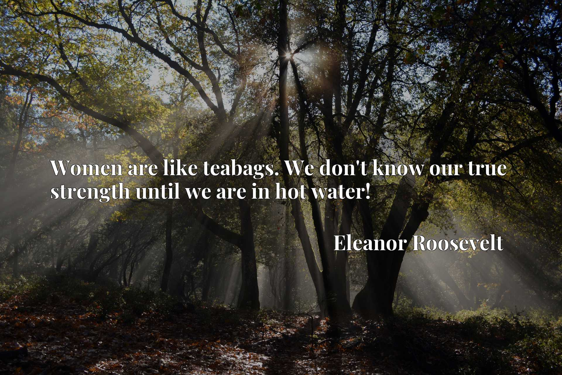 Quote Picture :Women are like teabags. We don't know our true strength until we are in hot water!