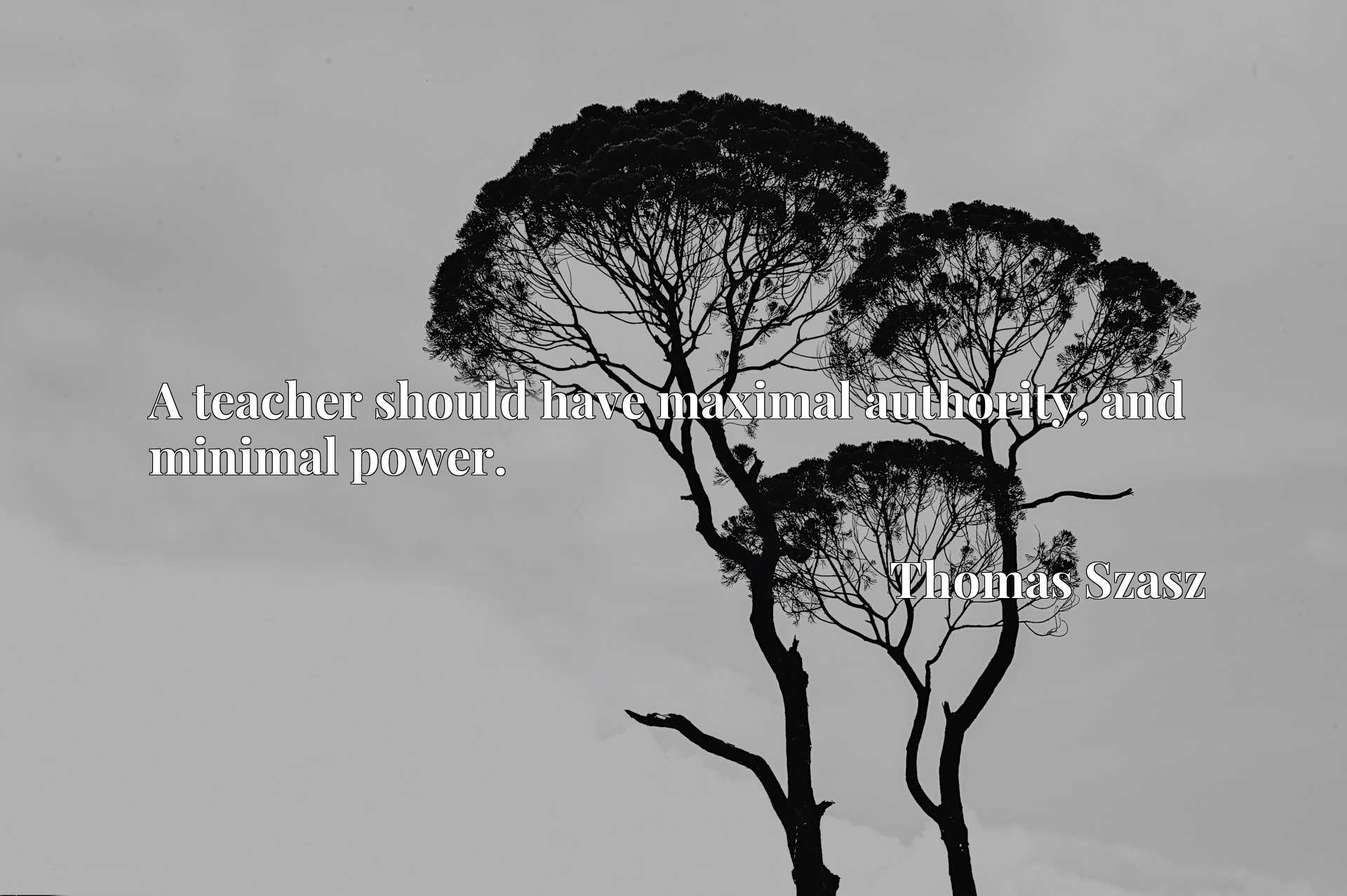 Quote Picture :A teacher should have maximal authority, and minimal power.