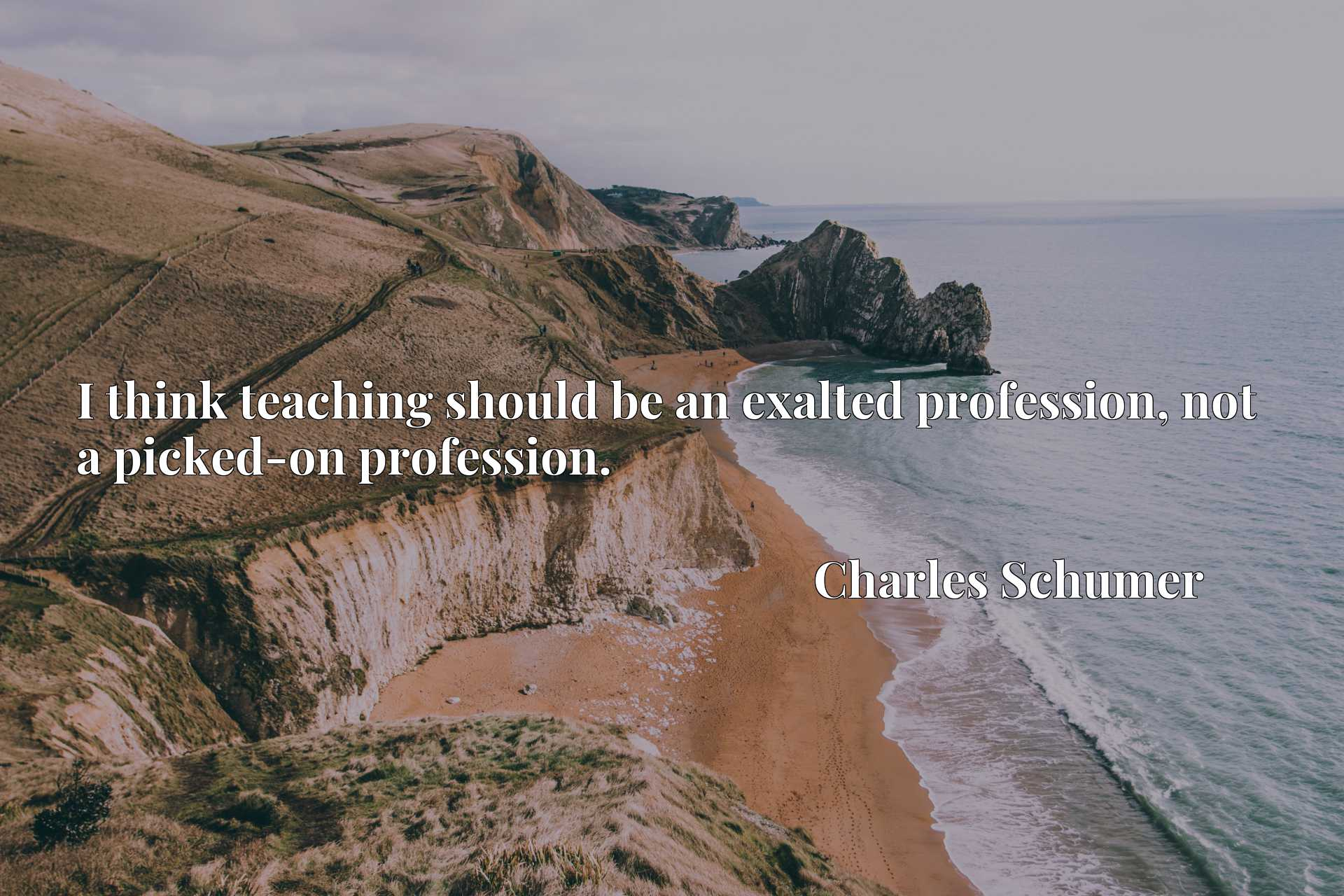 Quote Picture :I think teaching should be an exalted profession, not a picked-on profession.