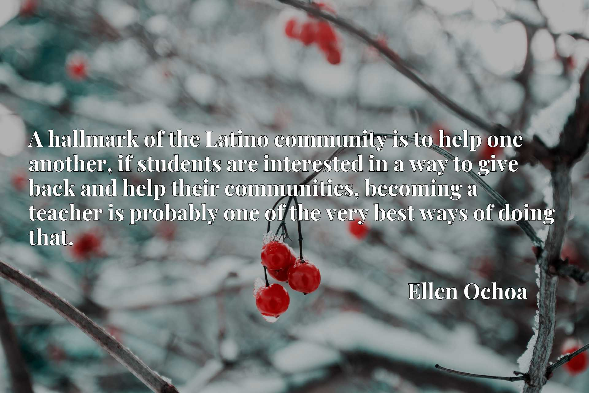 Quote Picture :A hallmark of the Latino community is to help one another, if students are interested in a way to give back and help their communities, becoming a teacher is probably one of the very best ways of doing that.