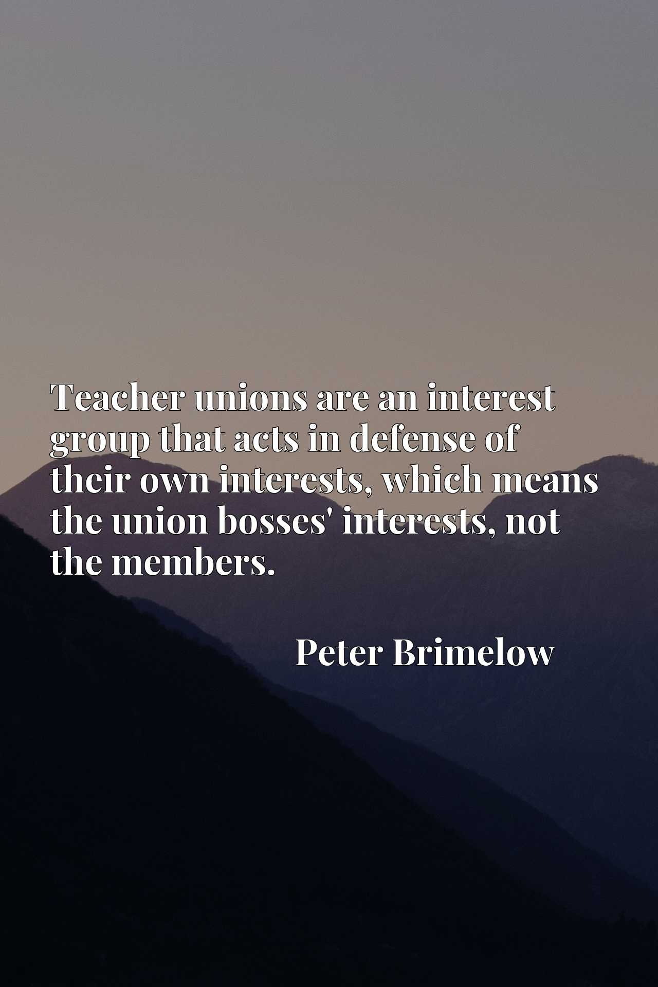Quote Picture :Teacher unions are an interest group that acts in defense of their own interests, which means the union bosses' interests, not the members.