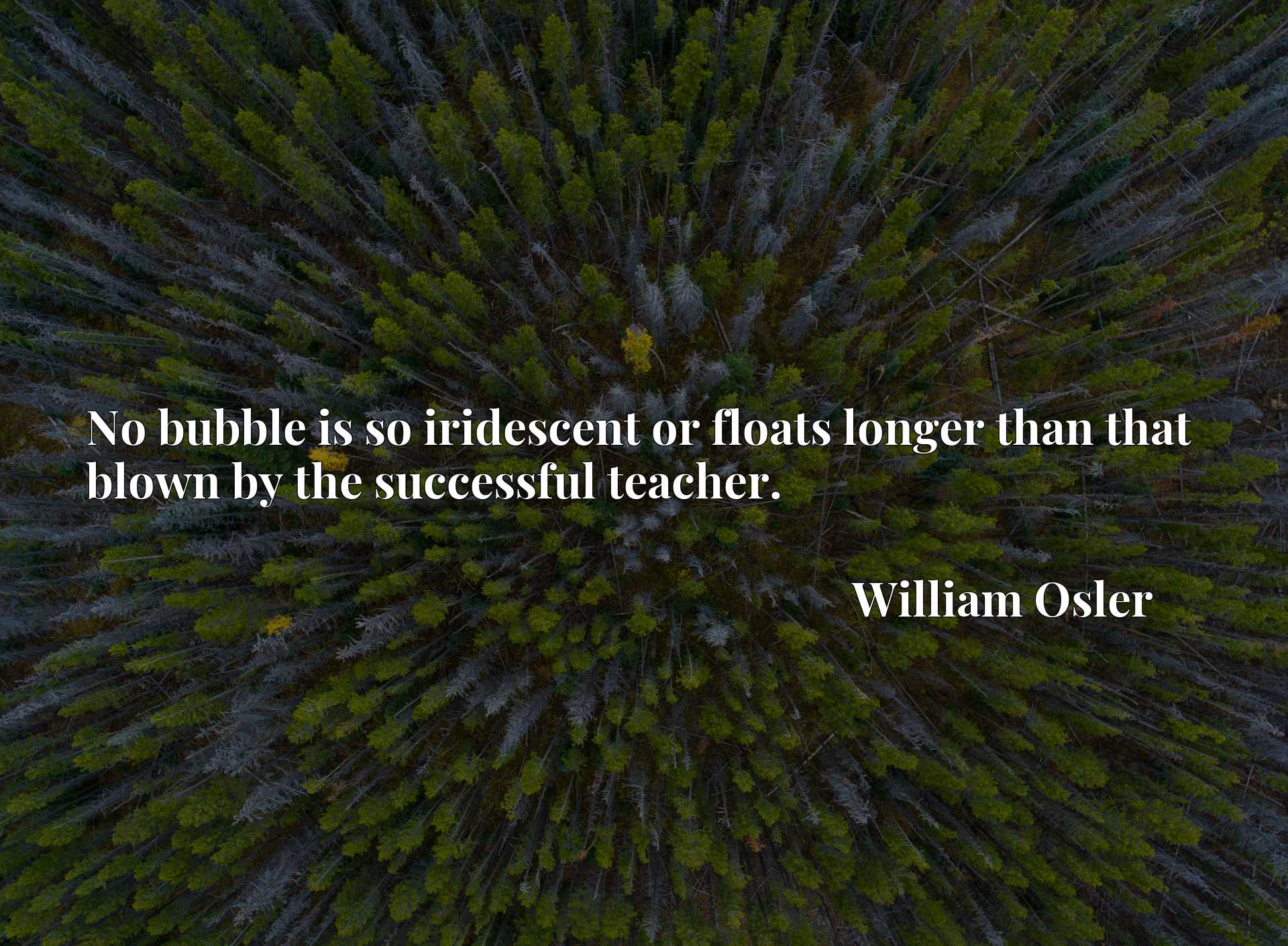 Quote Picture :No bubble is so iridescent or floats longer than that blown by the successful teacher.