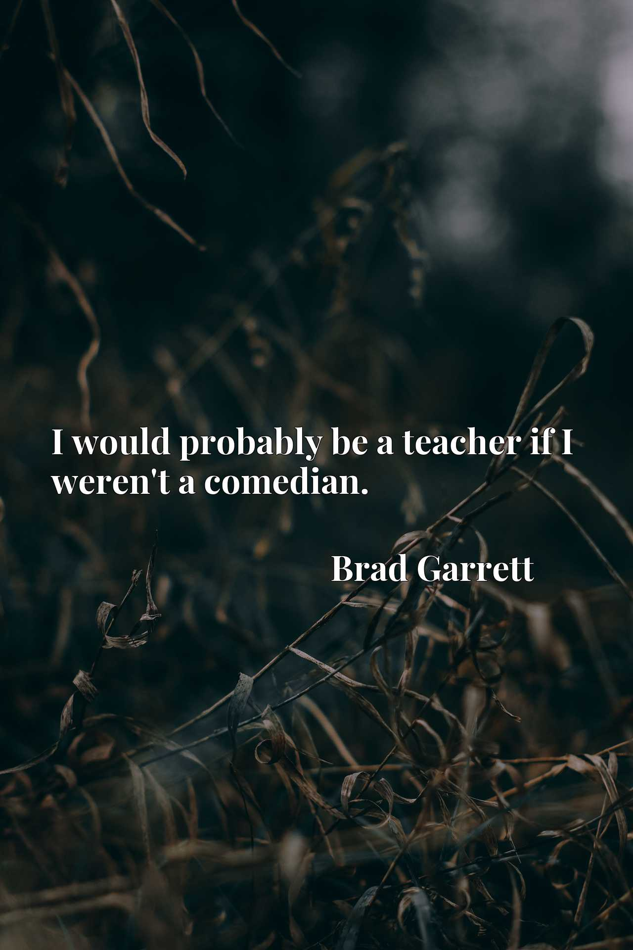 Quote Picture :I would probably be a teacher if I weren't a comedian.