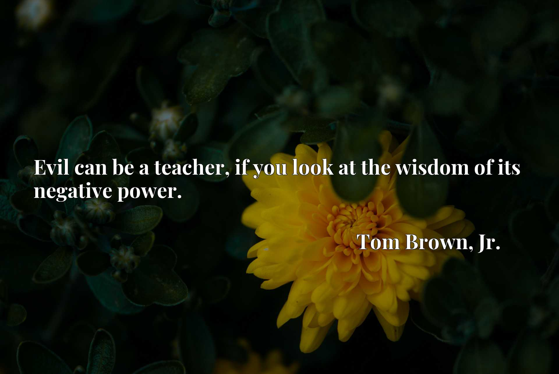 Quote Picture :Evil can be a teacher, if you look at the wisdom of its negative power.
