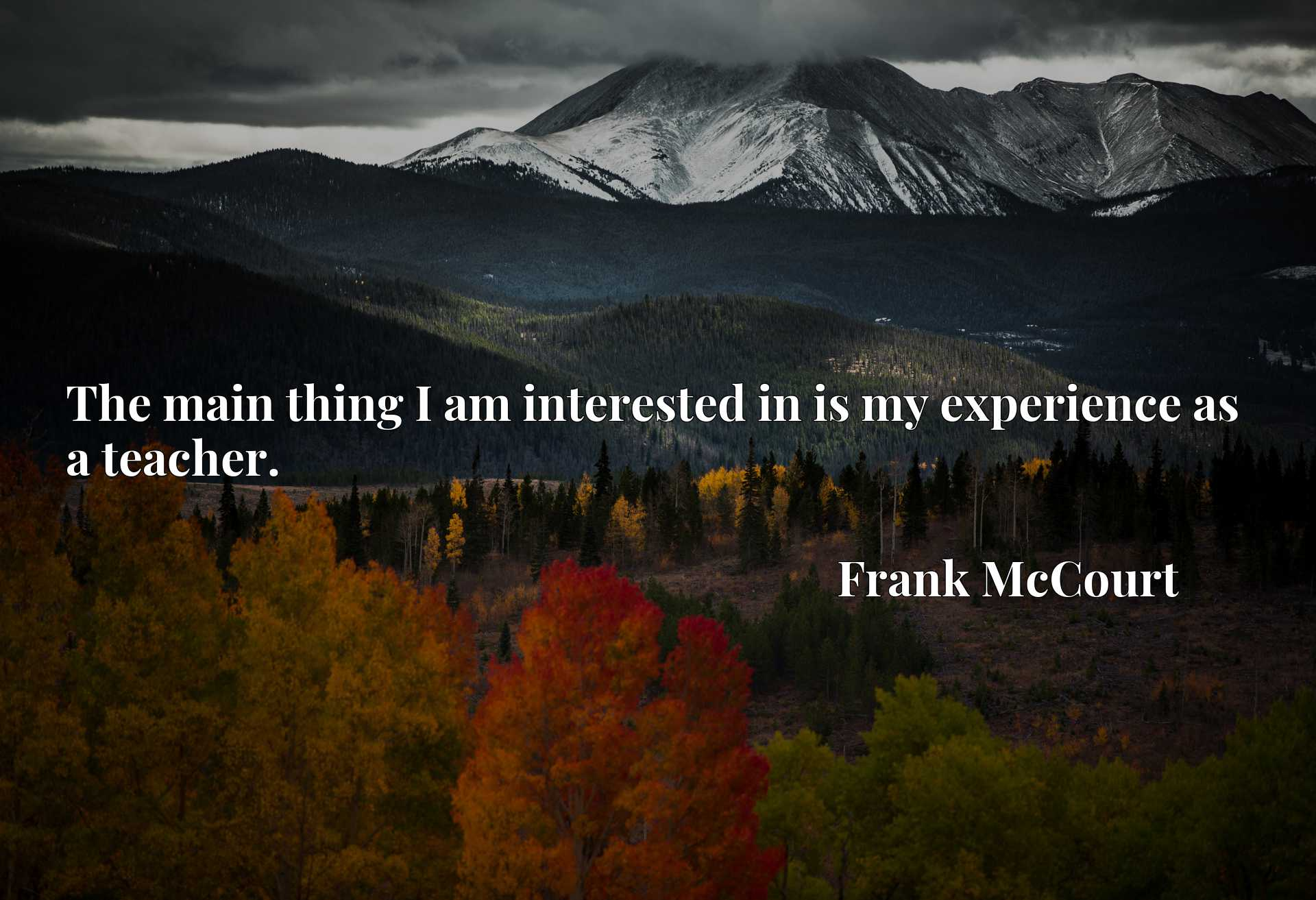 Quote Picture :The main thing I am interested in is my experience as a teacher.