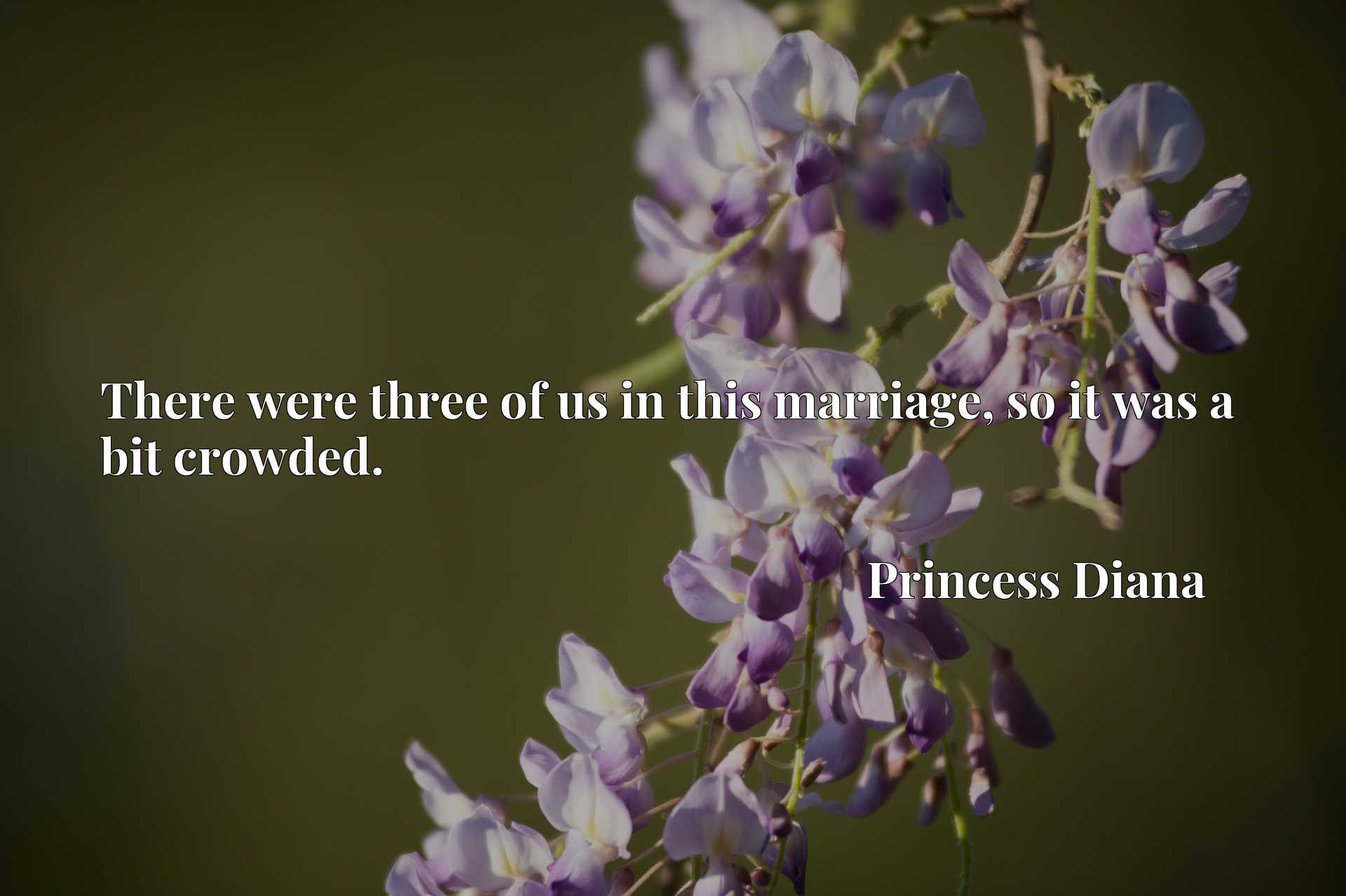 Quote Picture :There were three of us in this marriage, so it was a bit crowded.
