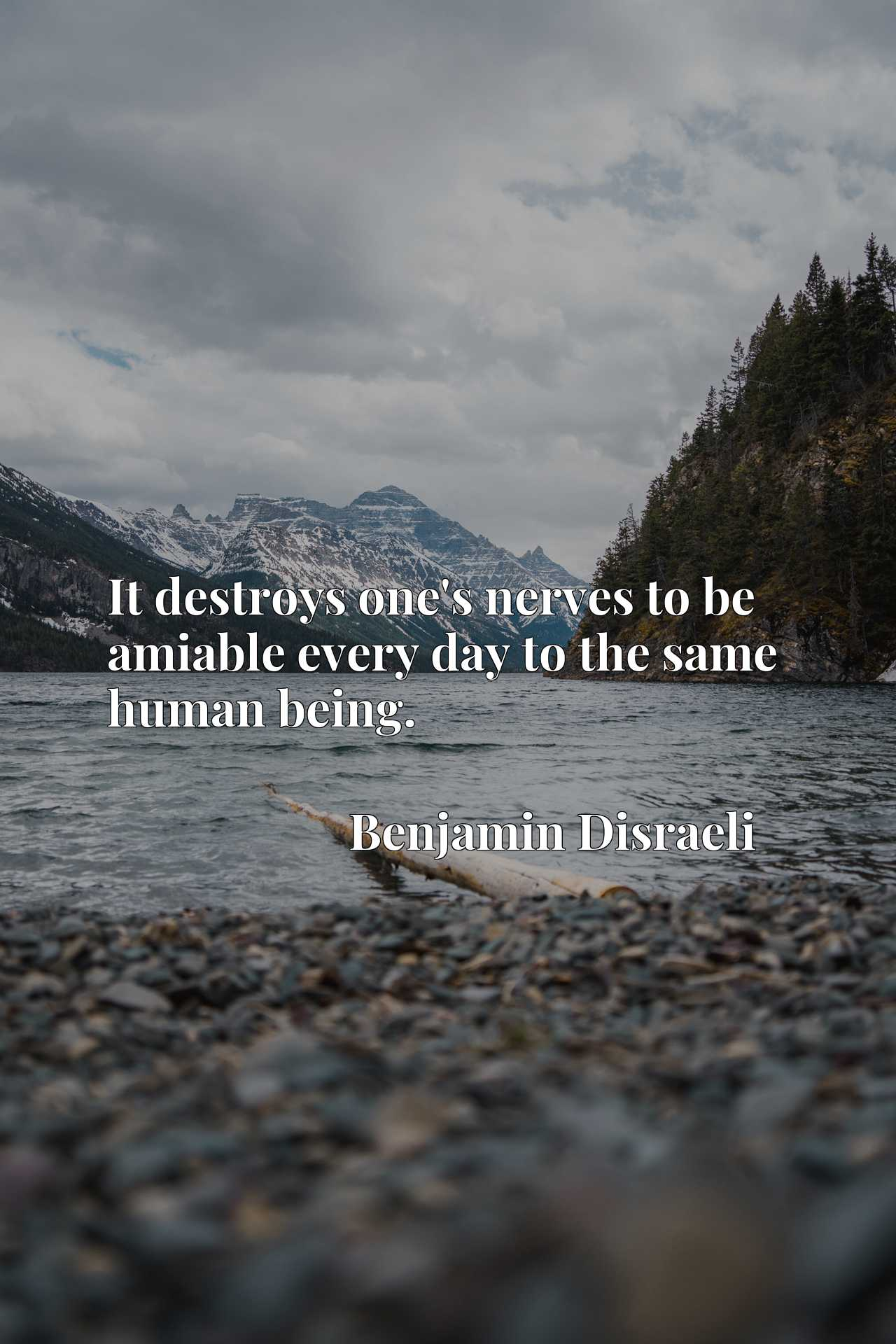 Quote Picture :It destroys one's nerves to be amiable every day to the same human being.