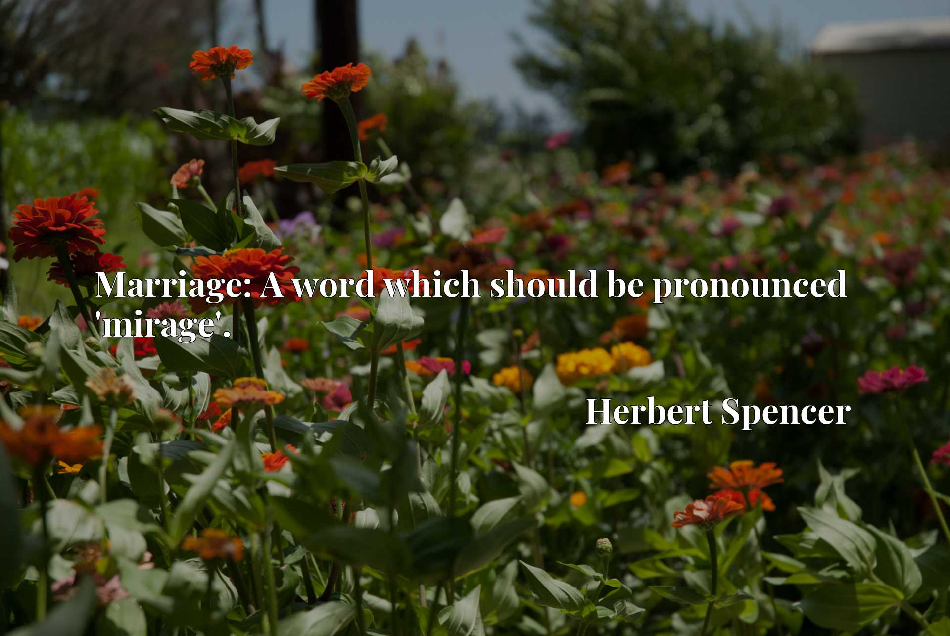 Quote Picture :Marriage: A word which should be pronounced 'mirage'.