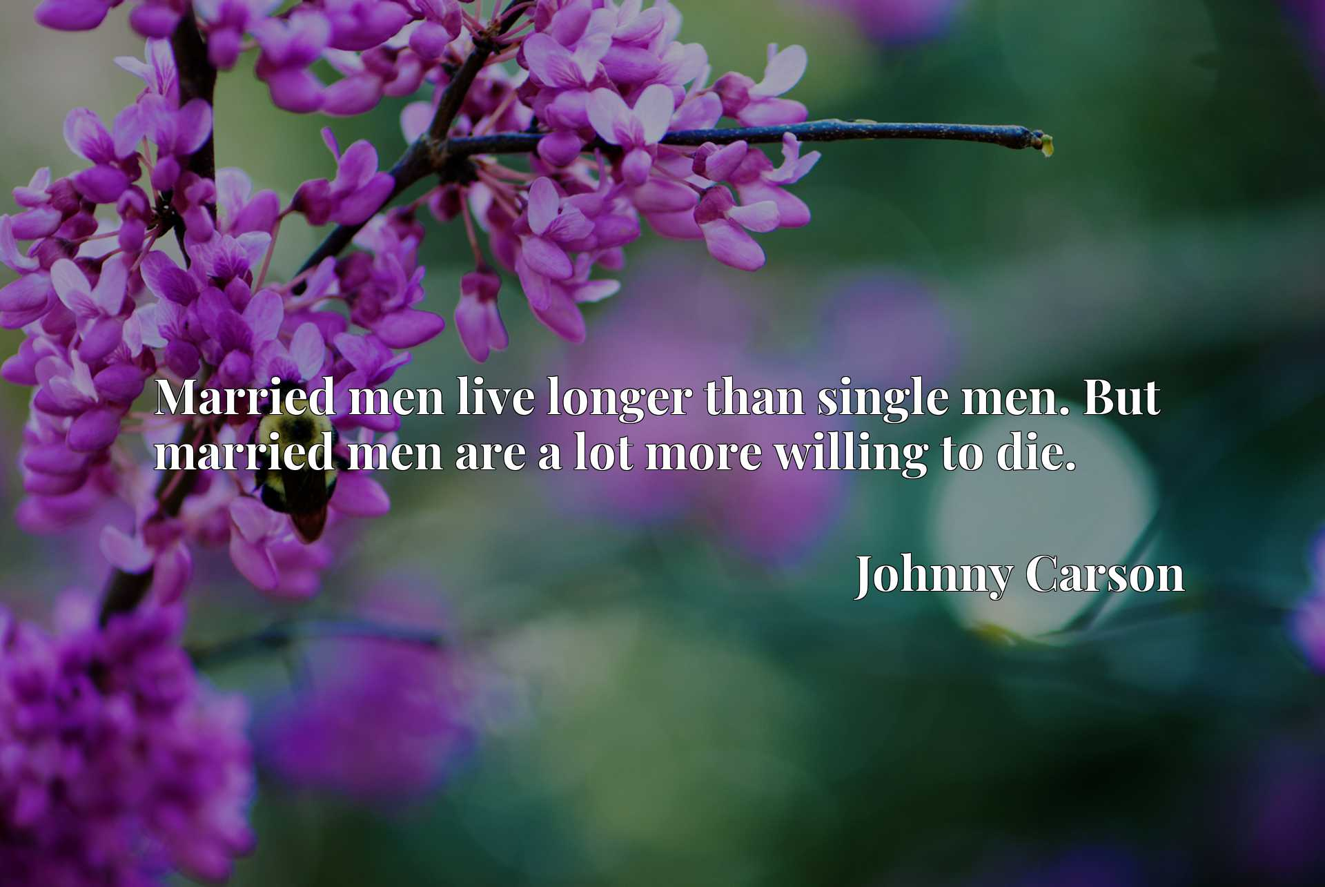 Quote Picture :Married men live longer than single men. But married men are a lot more willing to die.