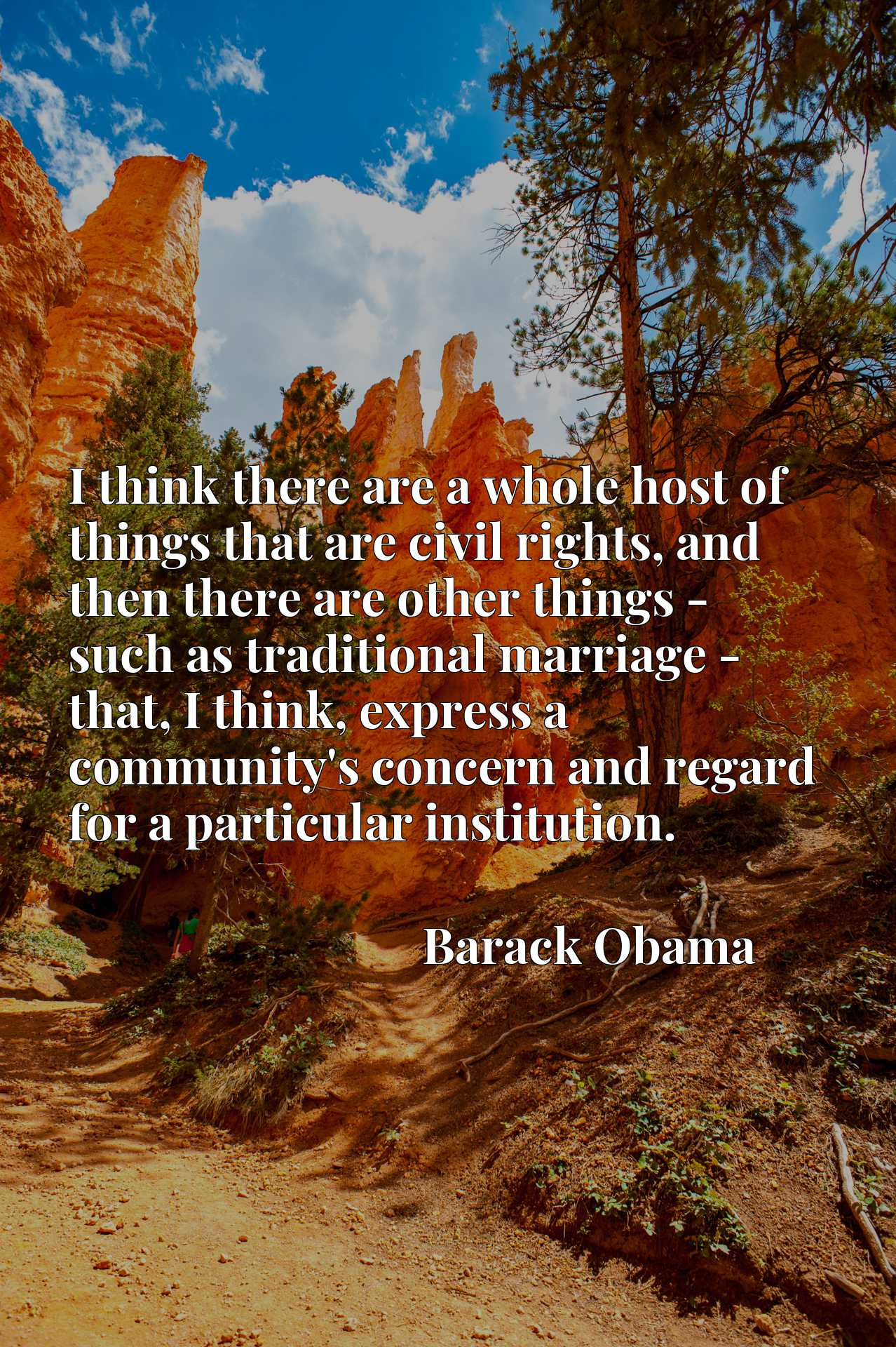 Quote Picture :I think there are a whole host of things that are civil rights, and then there are other things - such as traditional marriage - that, I think, express a community's concern and regard for a particular institution.