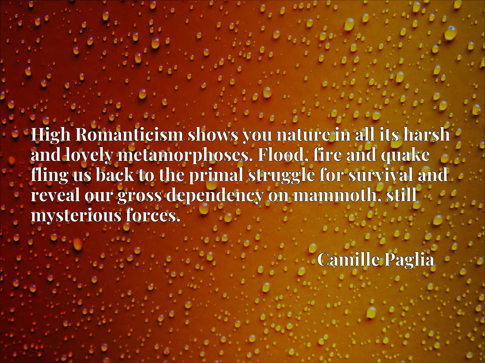 Quote Picture :High Romanticism shows you nature in all its harsh and lovely metamorphoses. Flood, fire and quake fling us back to the primal struggle for survival and reveal our gross dependency on mammoth, still mysterious forces.