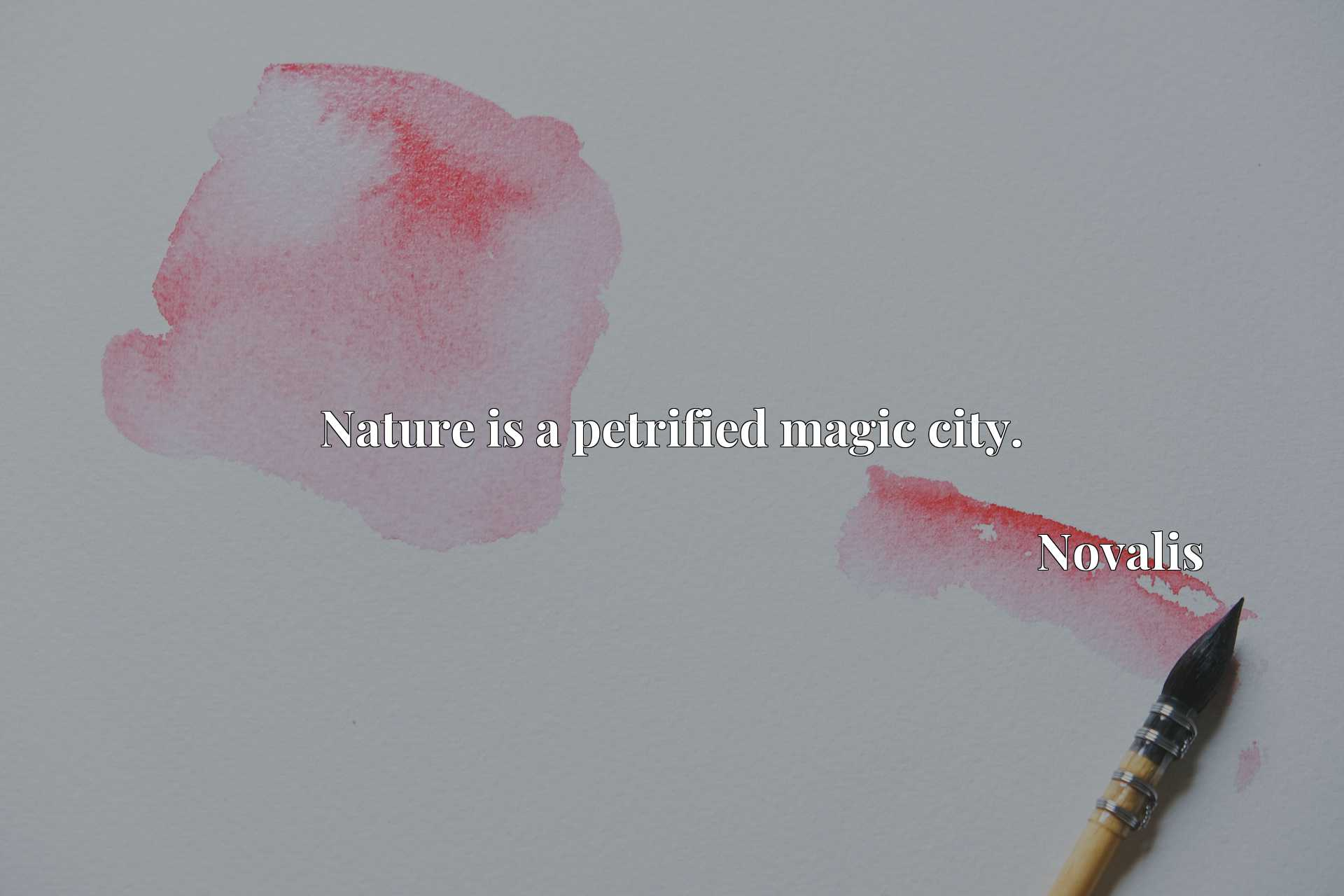 Quote Picture :Nature is a petrified magic city.