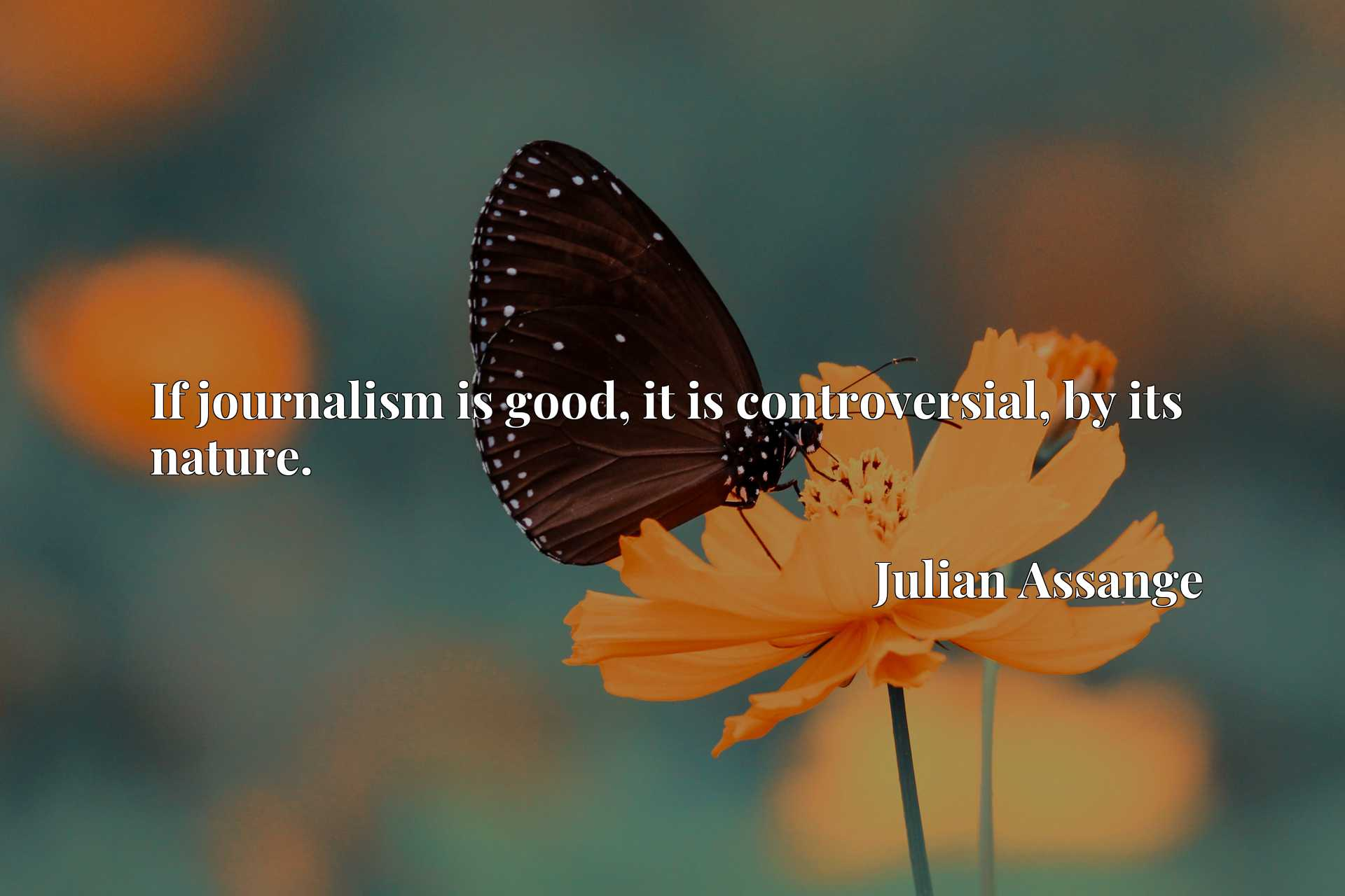 Quote Picture :If journalism is good, it is controversial, by its nature.