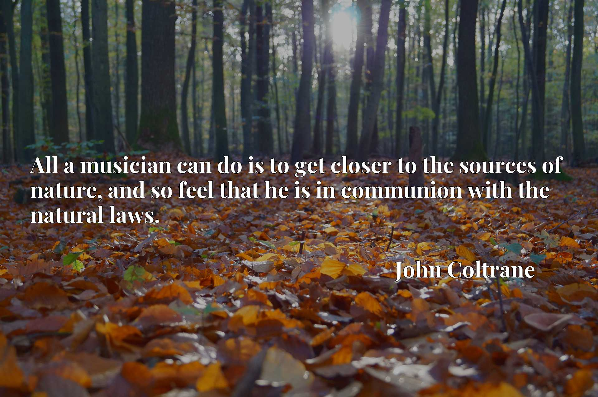 Quote Picture :All a musician can do is to get closer to the sources of nature, and so feel that he is in communion with the natural laws.