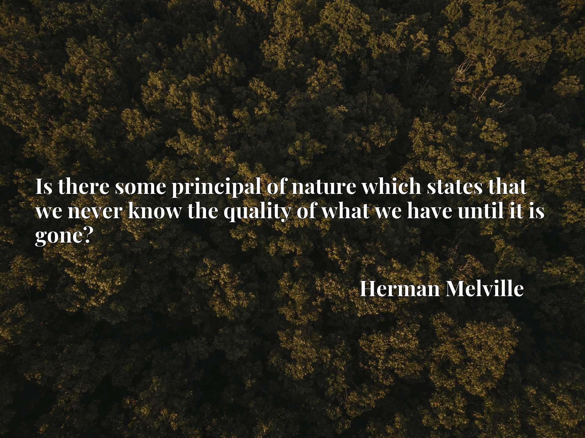 Quote Picture :Is there some principal of nature which states that we never know the quality of what we have until it is gone?