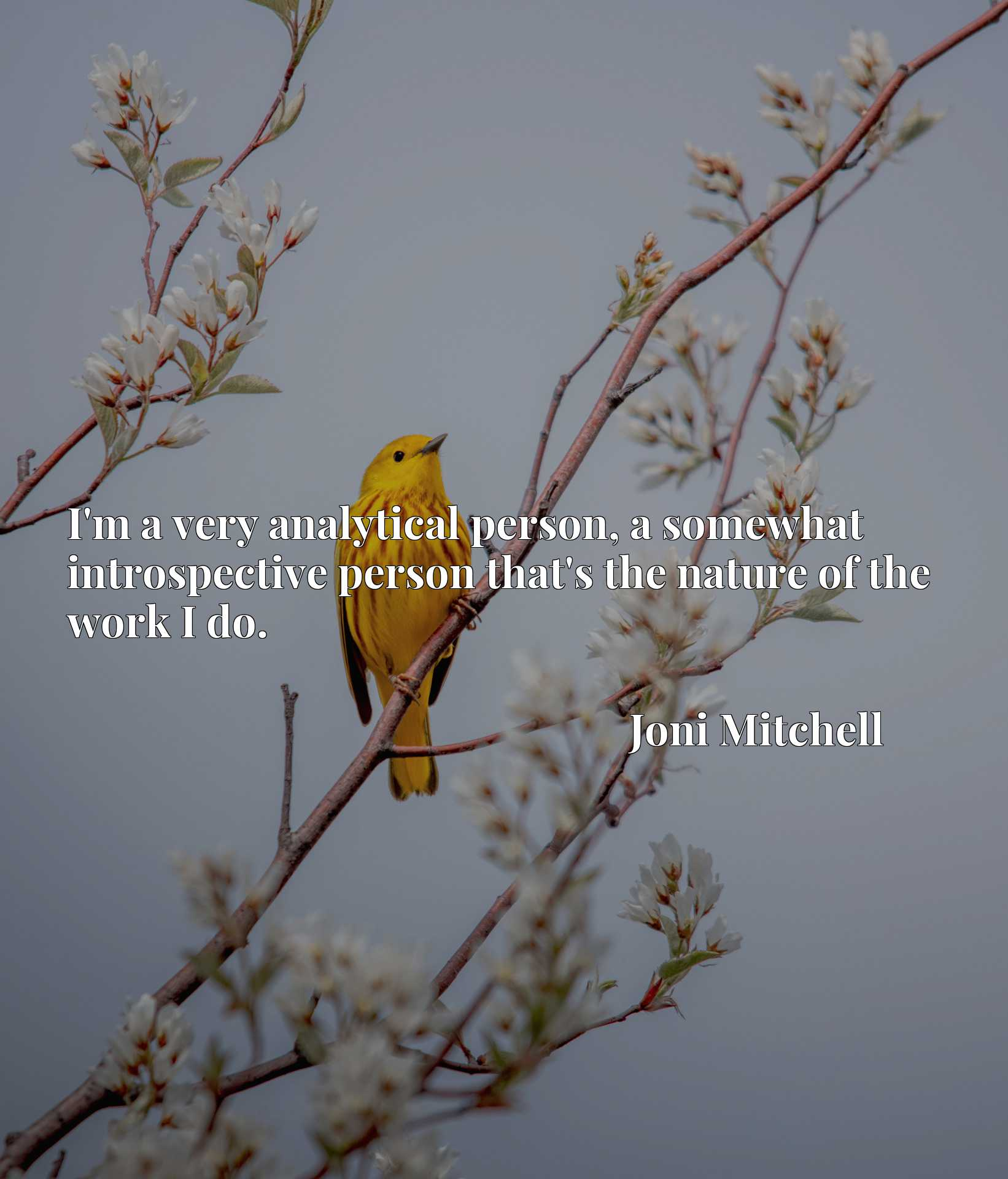 Quote Picture :I'm a very analytical person, a somewhat introspective person that's the nature of the work I do.