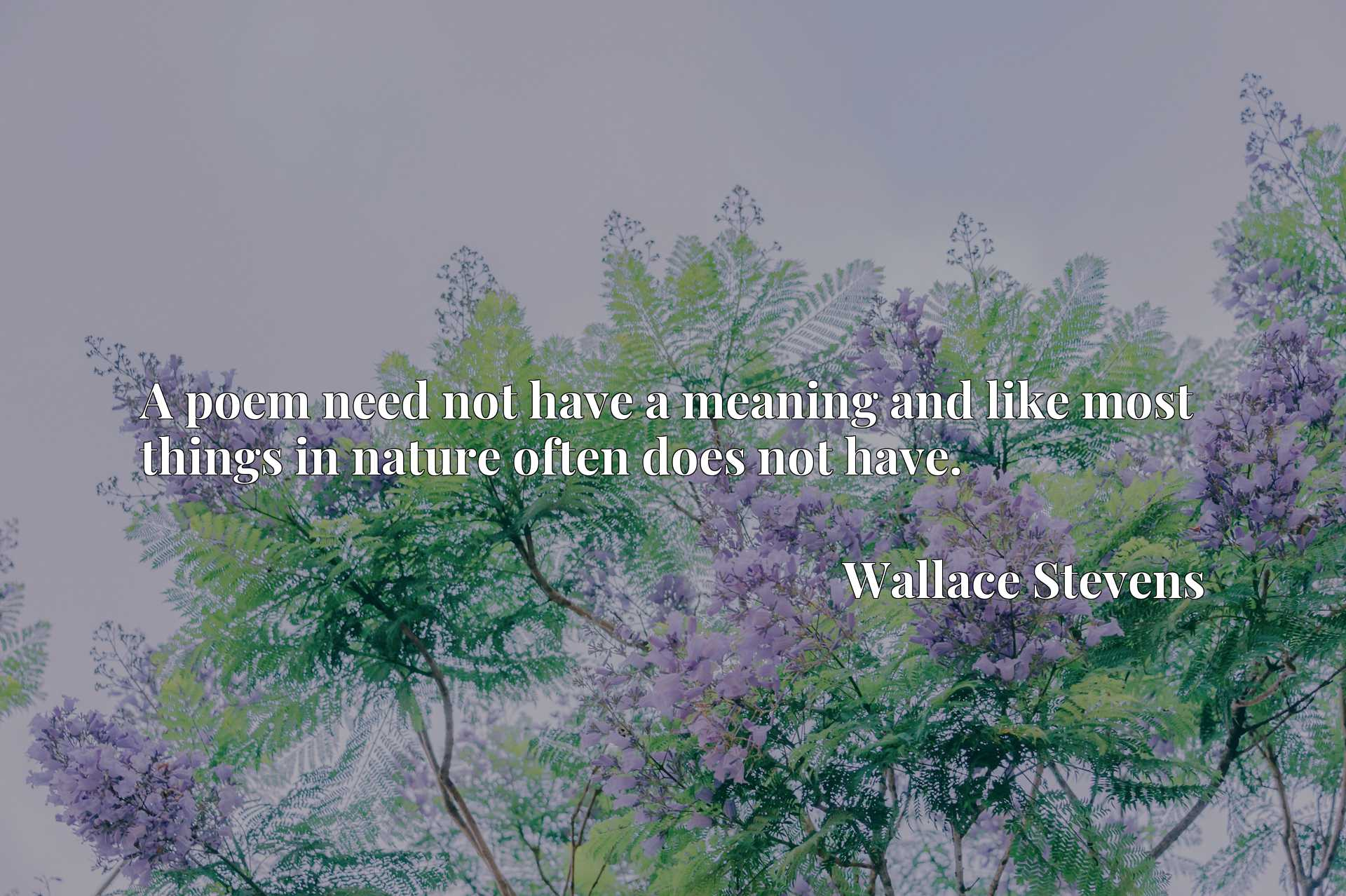 Quote Picture :A poem need not have a meaning and like most things in nature often does not have.
