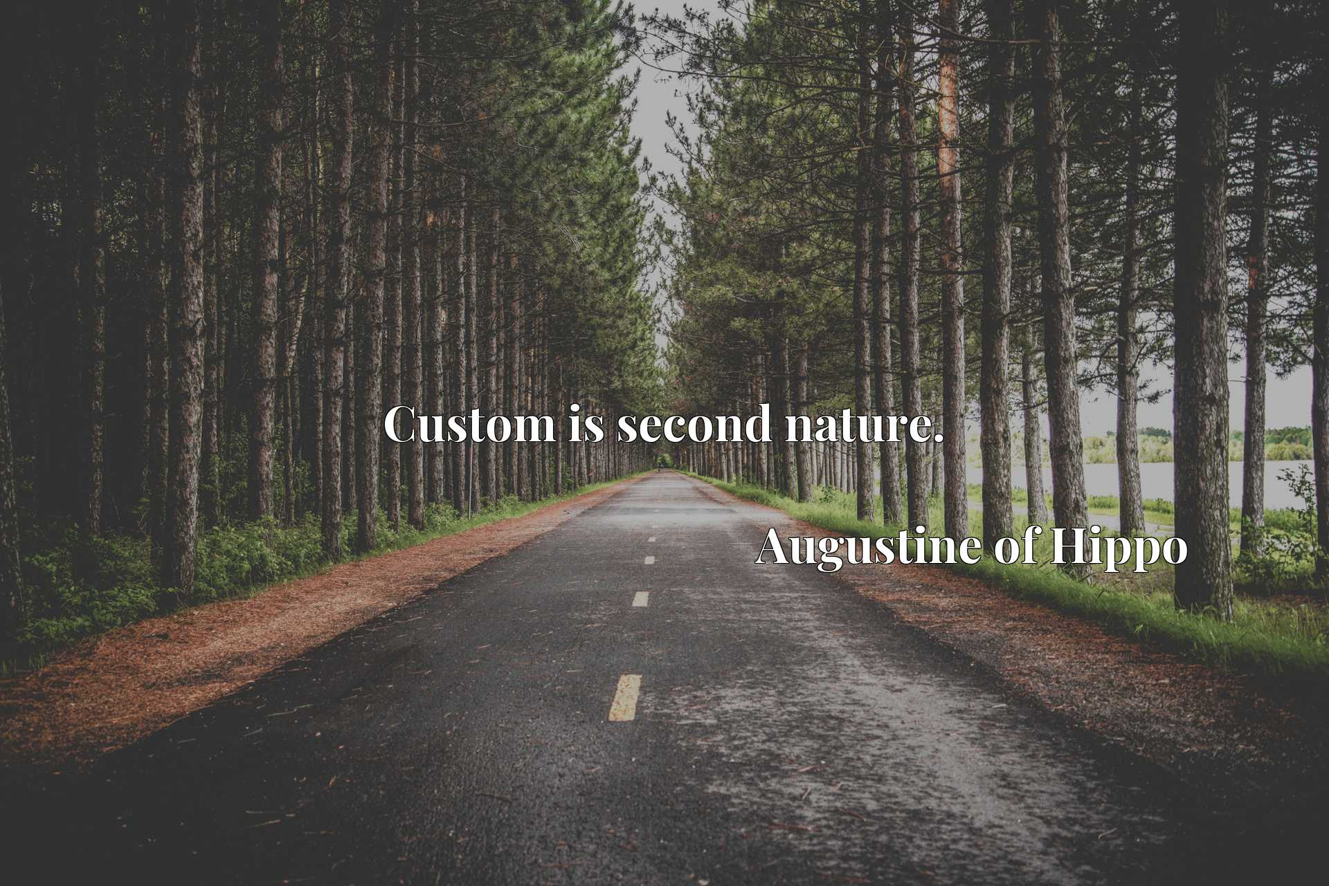 Quote Picture :Custom is second nature.