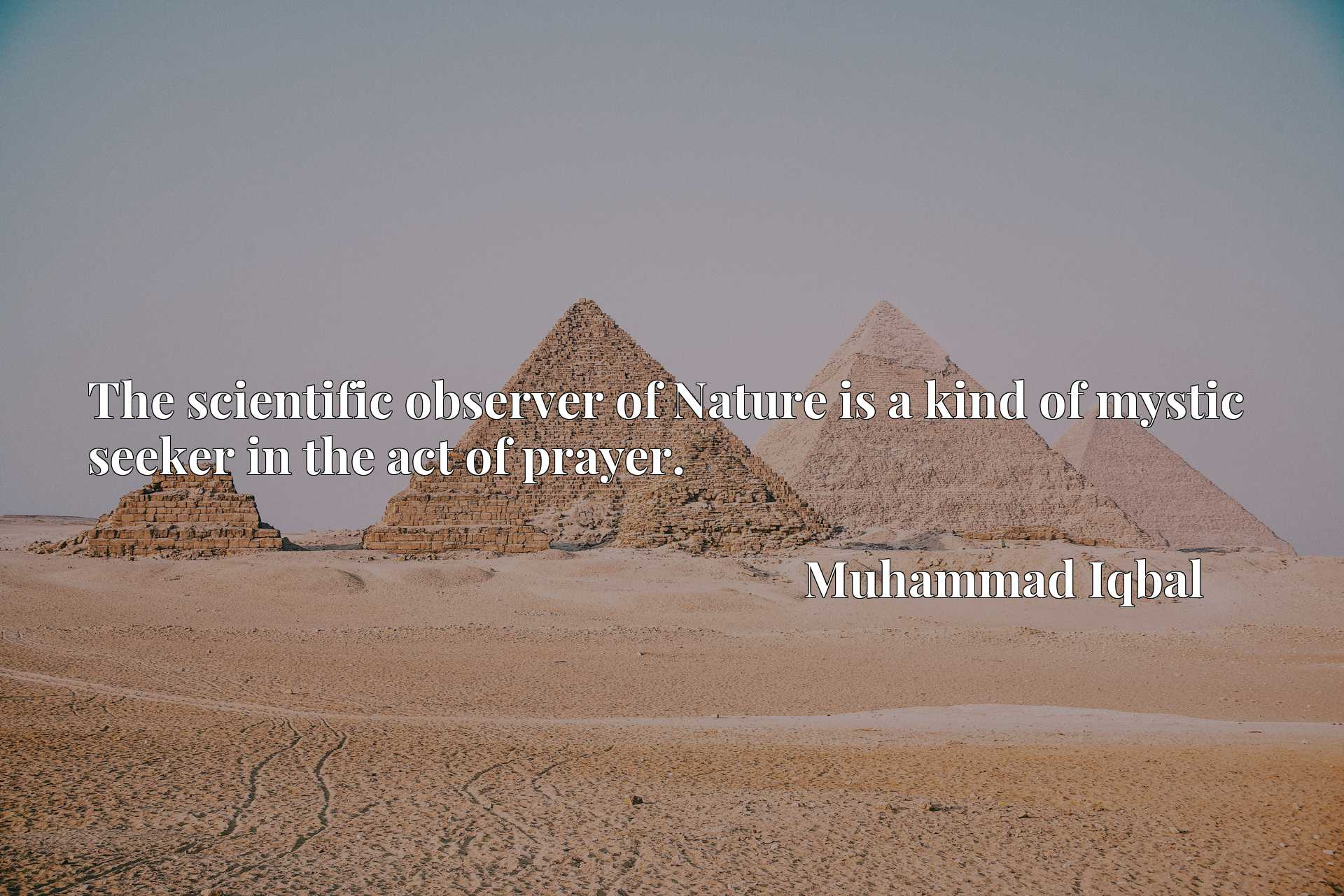 Quote Picture :The scientific observer of Nature is a kind of mystic seeker in the act of prayer.