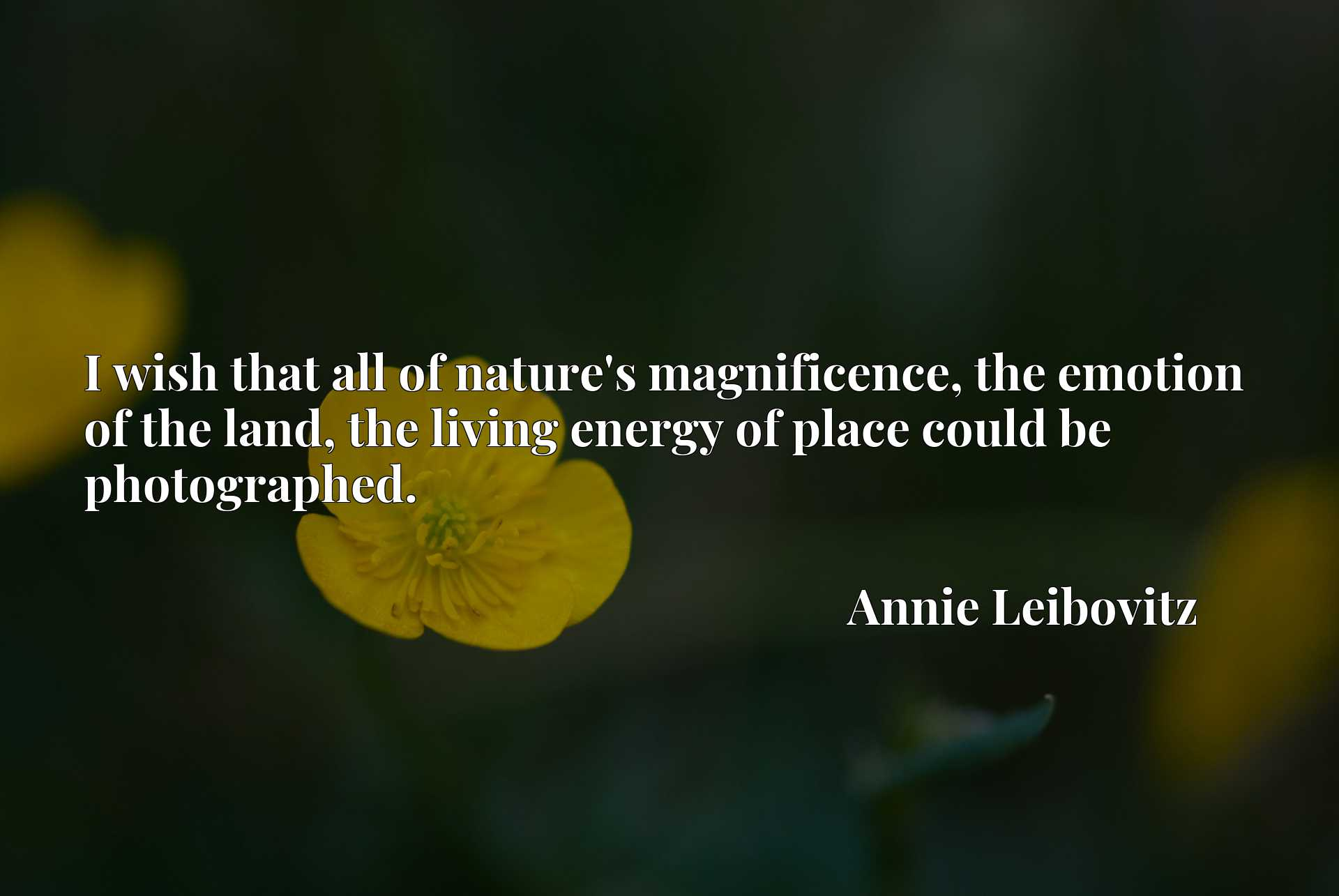 Quote Picture :I wish that all of nature's magnificence, the emotion of the land, the living energy of place could be photographed.