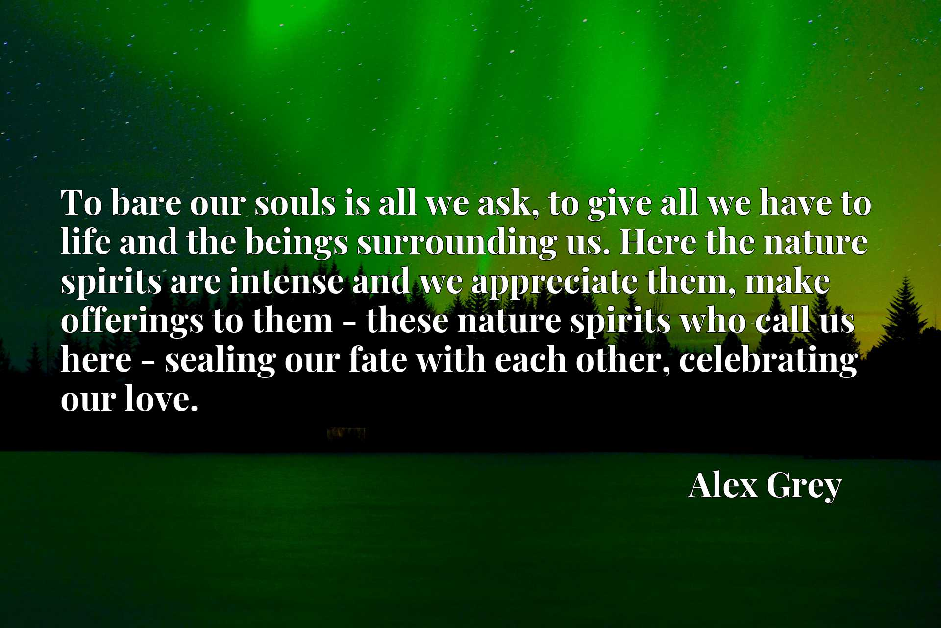 Quote Picture :To bare our souls is all we ask, to give all we have to life and the beings surrounding us. Here the nature spirits are intense and we appreciate them, make offerings to them - these nature spirits who call us here - sealing our fate with each other, celebrating our love.