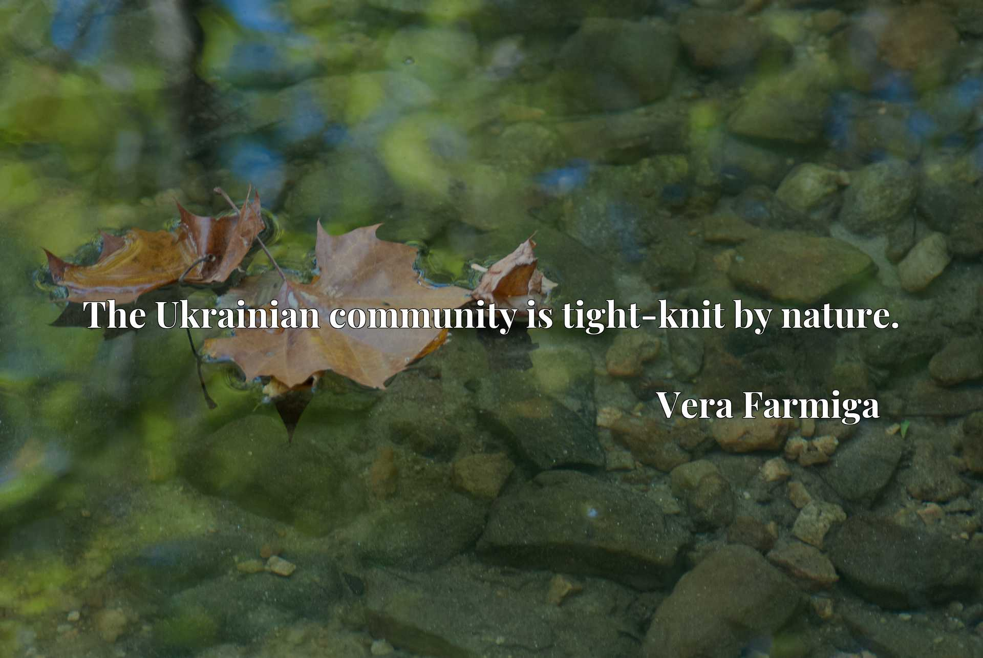 Quote Picture :The Ukrainian community is tight-knit by nature.