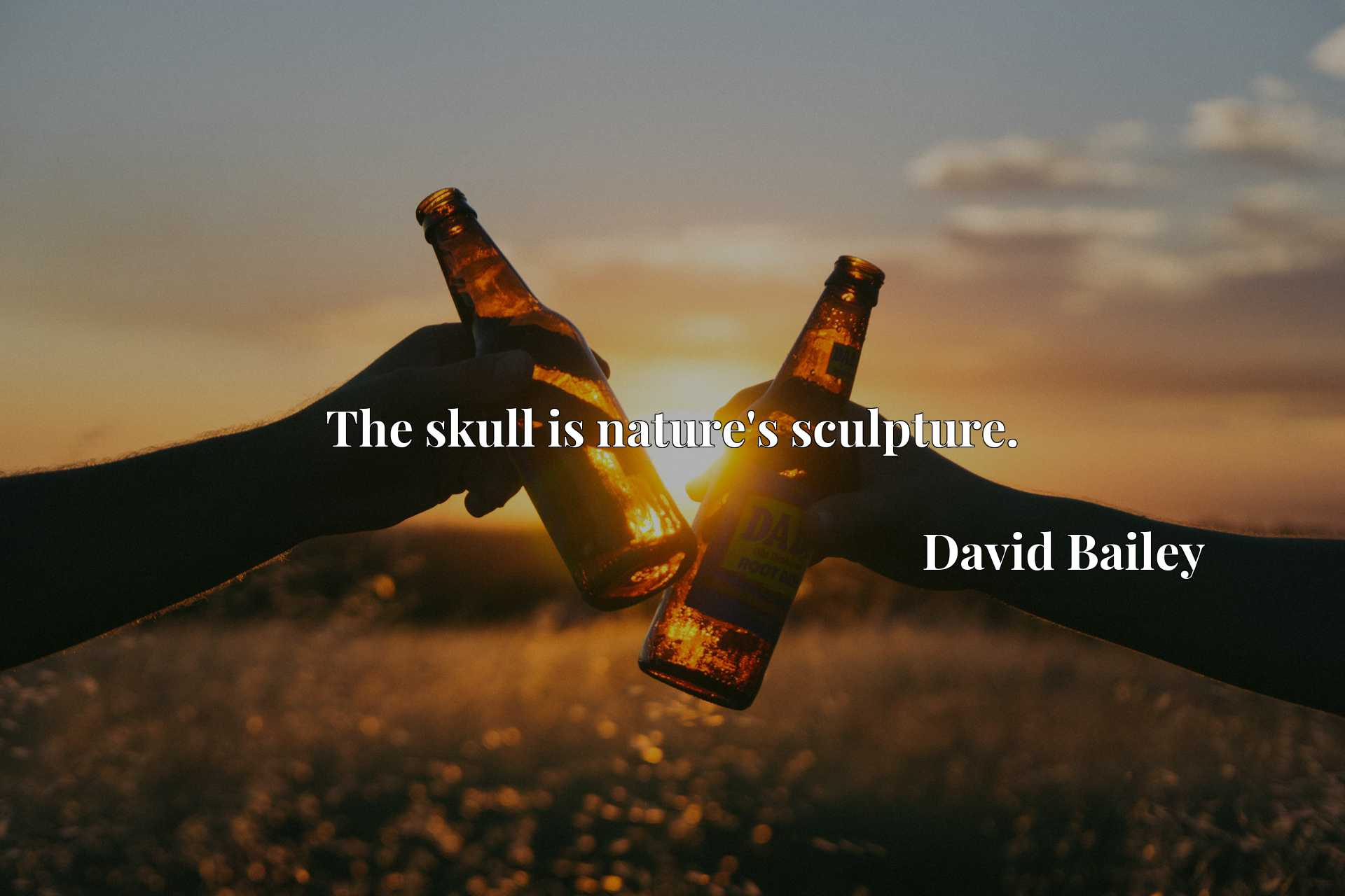 Quote Picture :The skull is nature's sculpture.