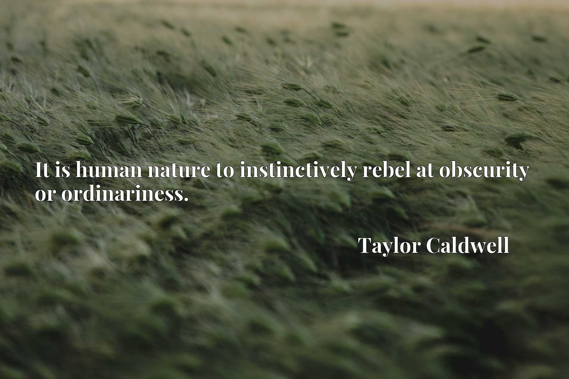 Quote Picture :It is human nature to instinctively rebel at obscurity or ordinariness.