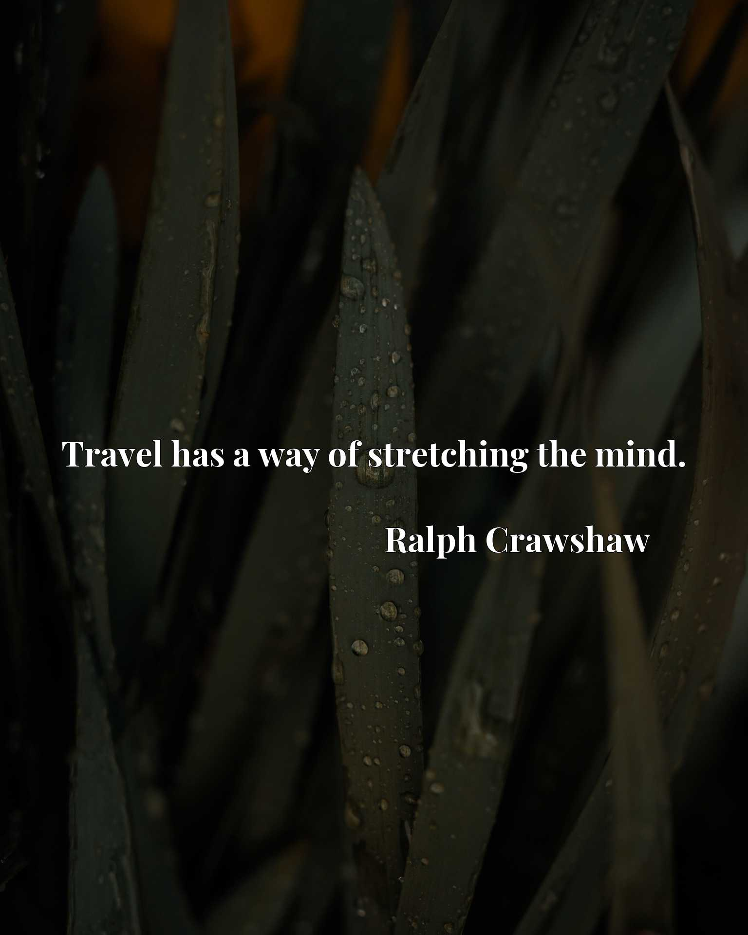 Quote Picture :Travel has a way of stretching the mind.