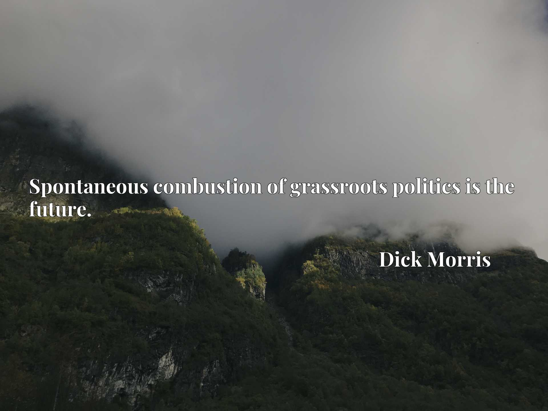 Quote Picture :Spontaneous combustion of grassroots politics is the future.