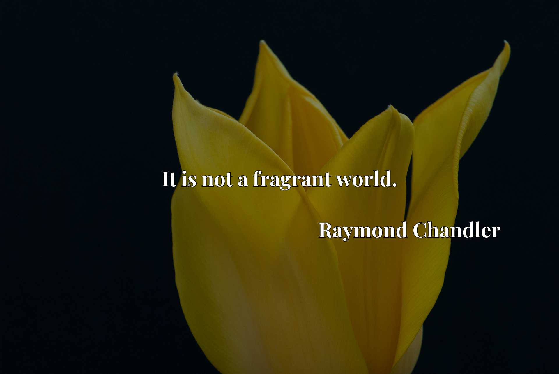 Quote Picture :It is not a fragrant world.