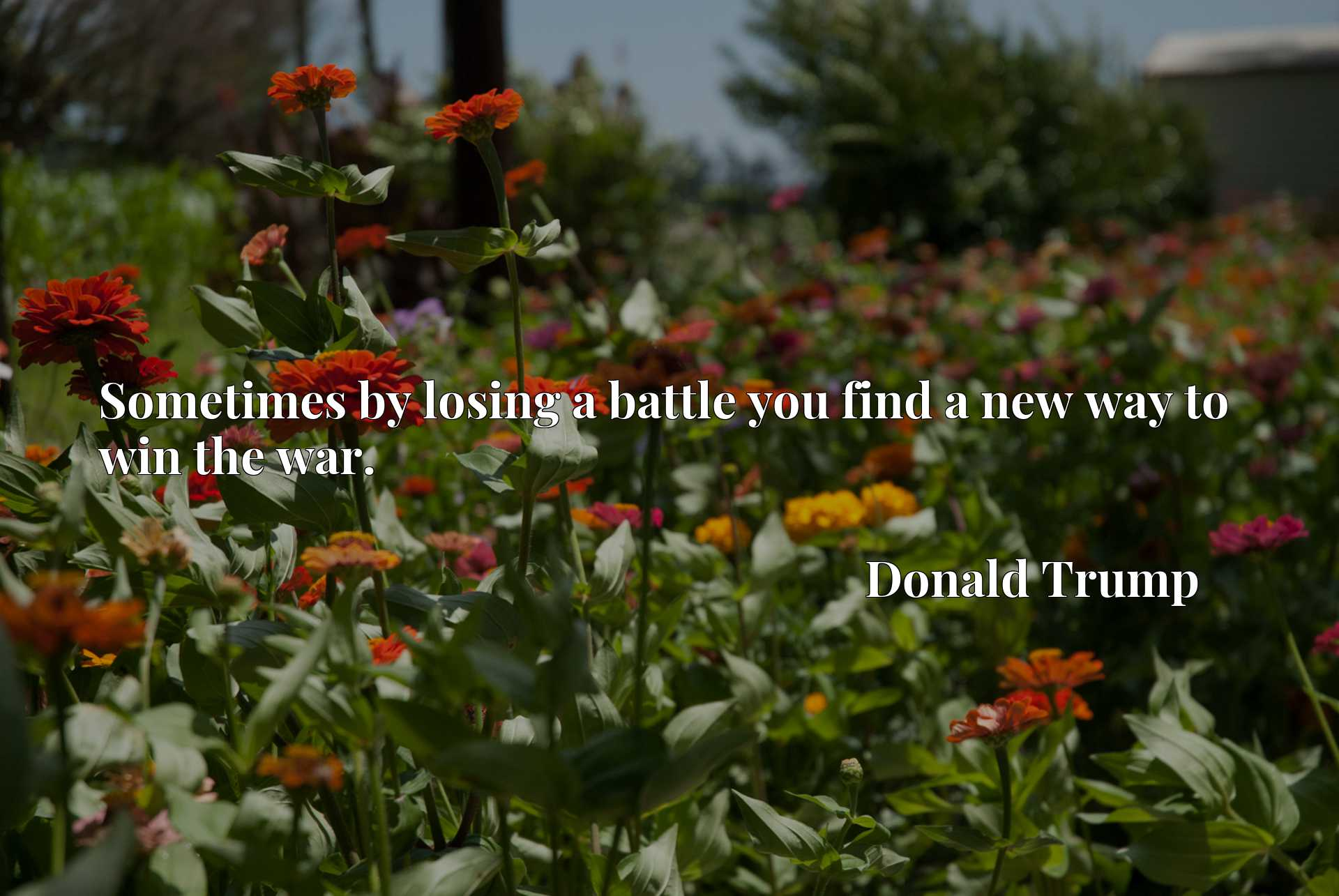 Quote Picture :Sometimes by losing a battle you find a new way to win the war.
