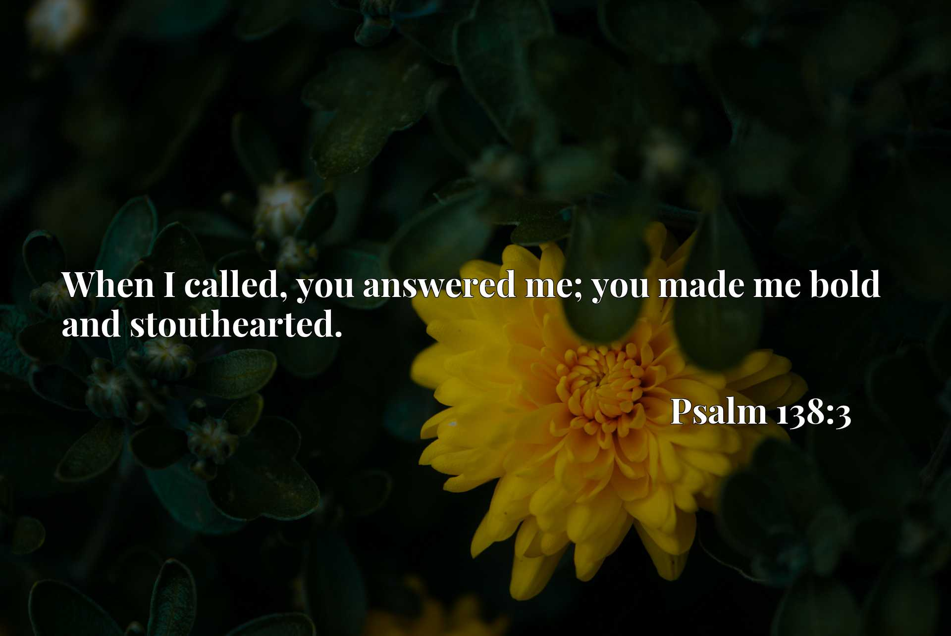 Quote Picture :When I called, you answered me; you made me bold and stouthearted.