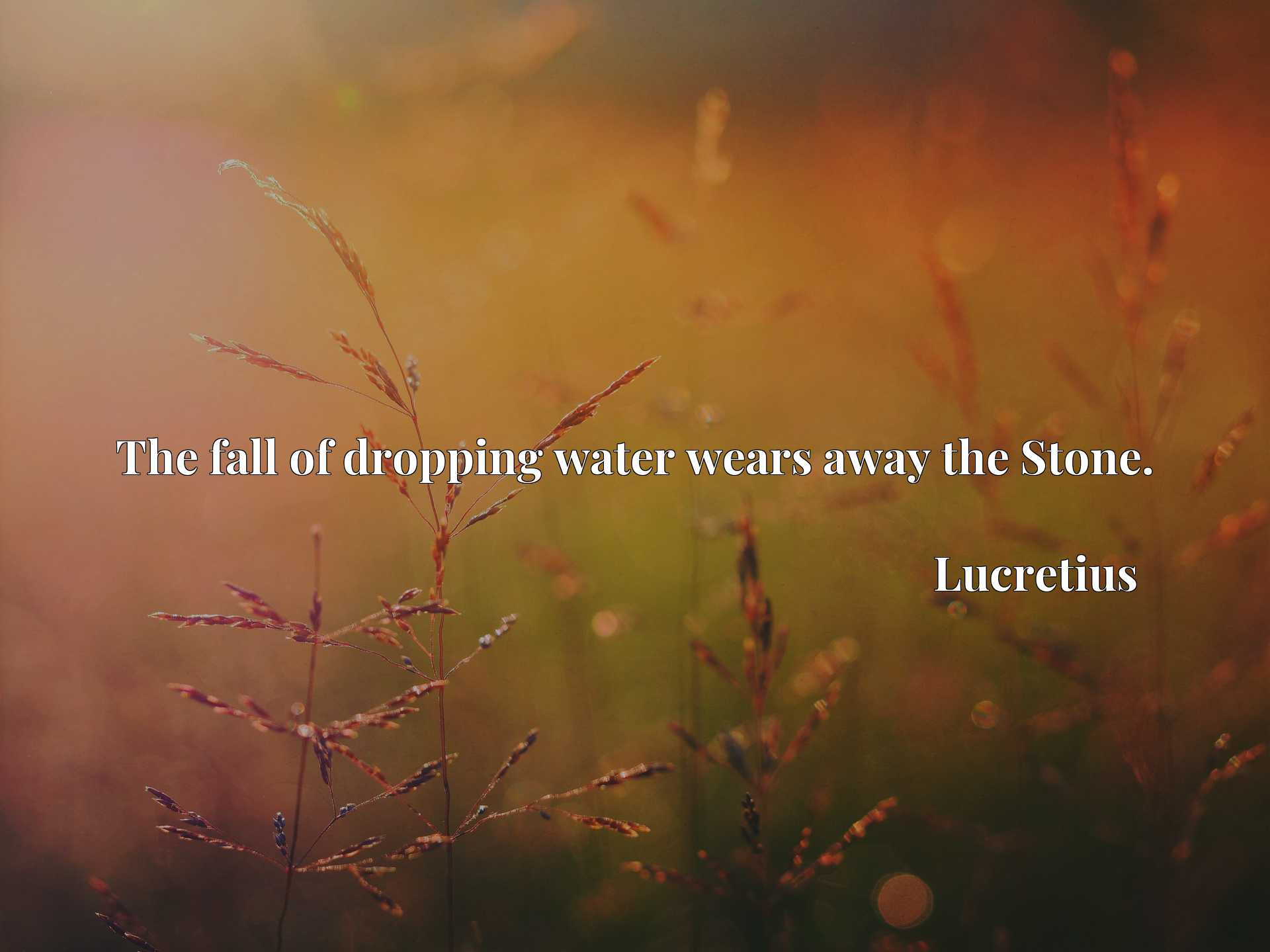 Quote Picture :The fall of dropping water wears away the Stone.