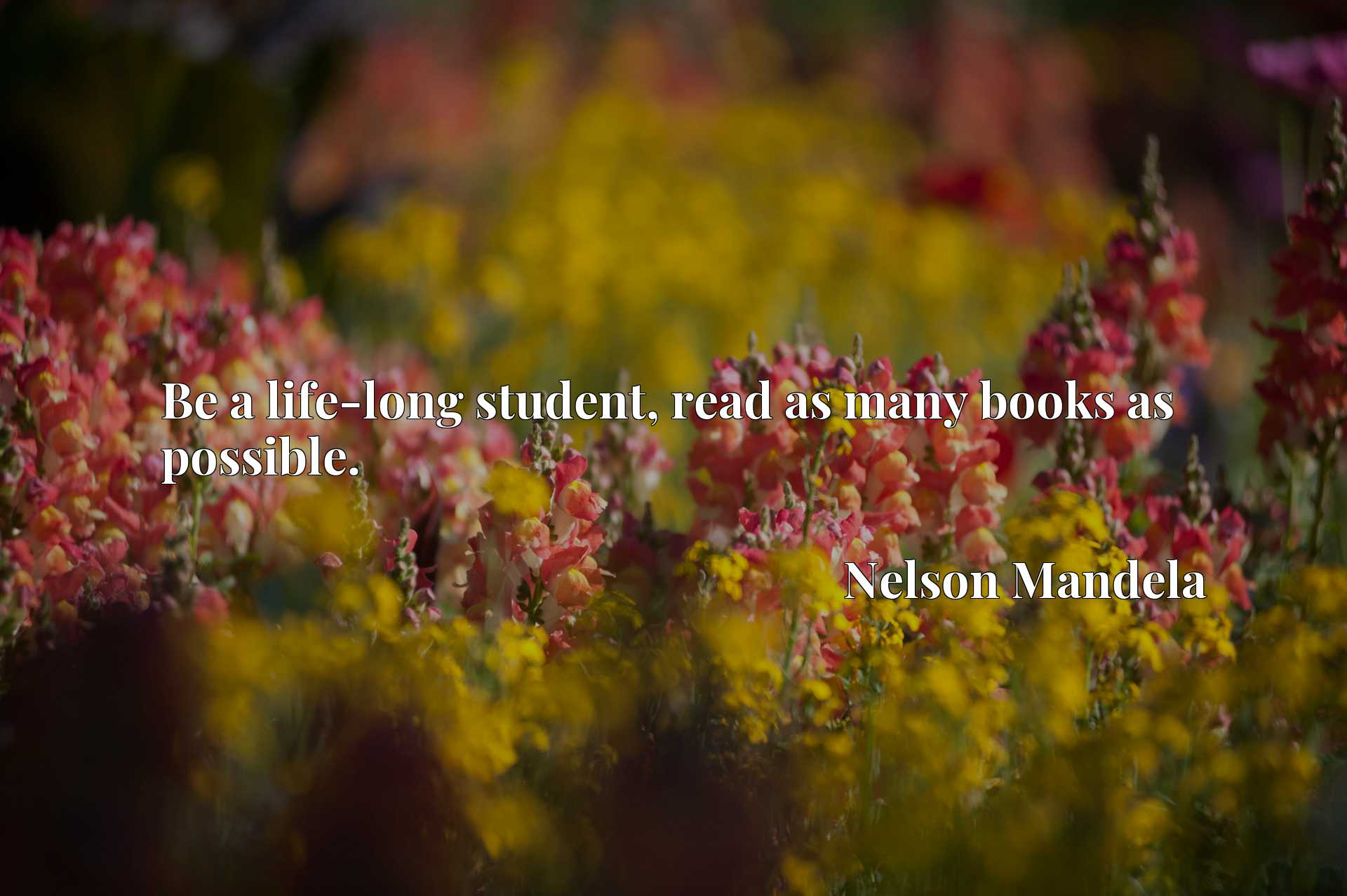 Quote Picture :Be a life-long student, read as many books as possible.