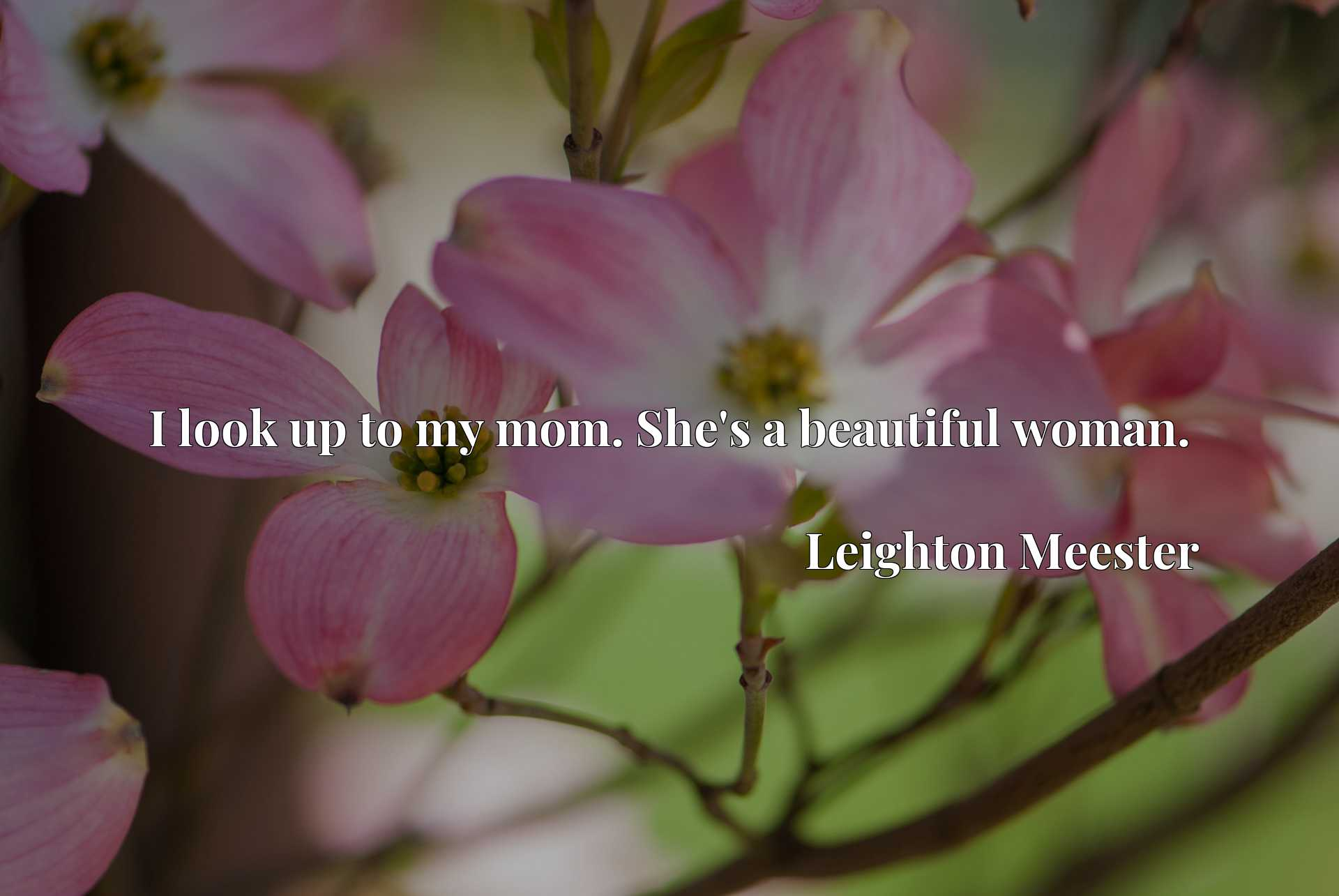Quote Picture :I look up to my mom. She's a beautiful woman.