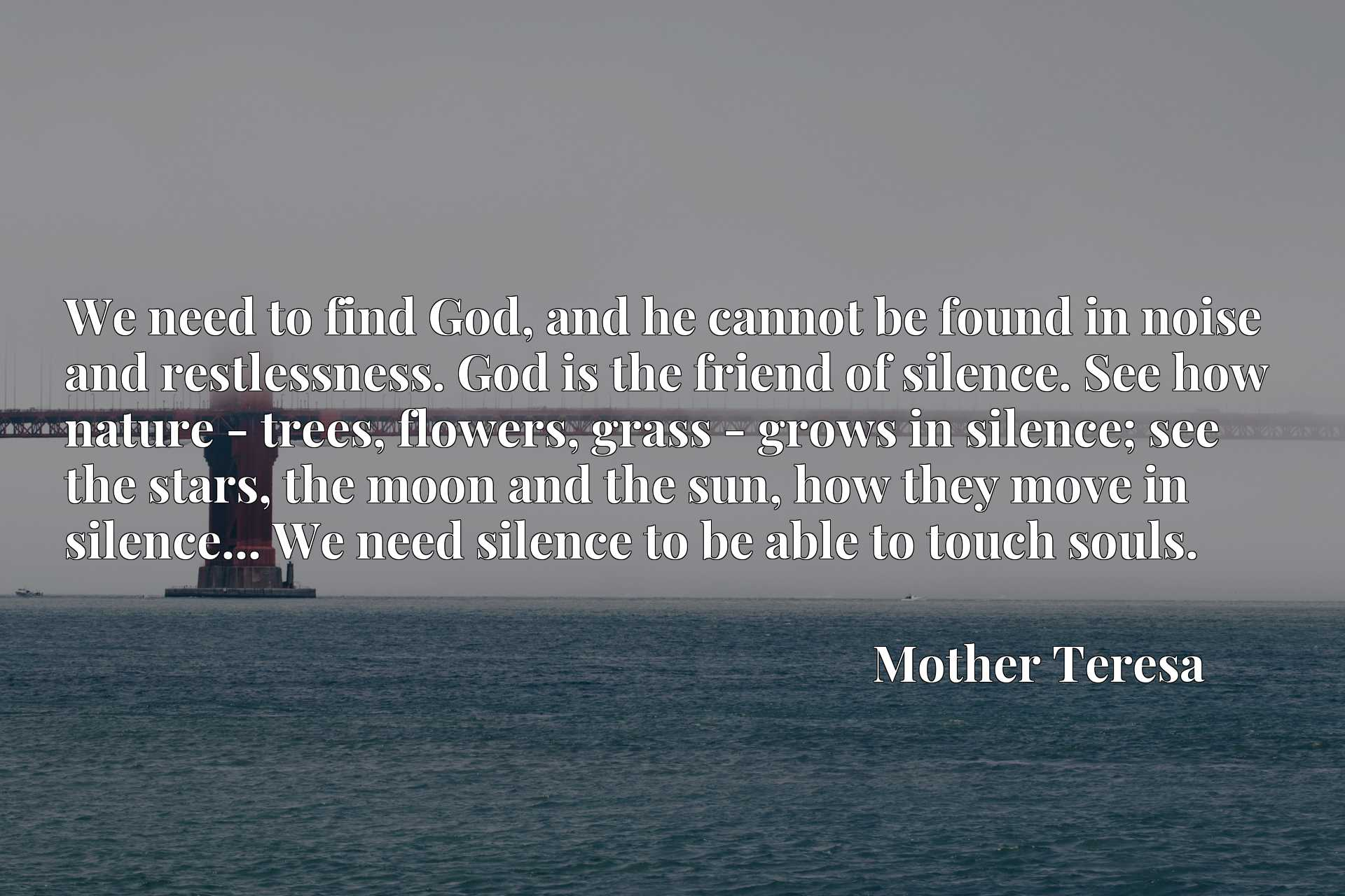 We need to find God, and he cannot be found in noise and restlessness. God is the friend of silence. See how nature - trees, flowers, grass - grows in silence; see the stars, the moon and the sun, how they move in silence... We need silence to be able to touch souls.