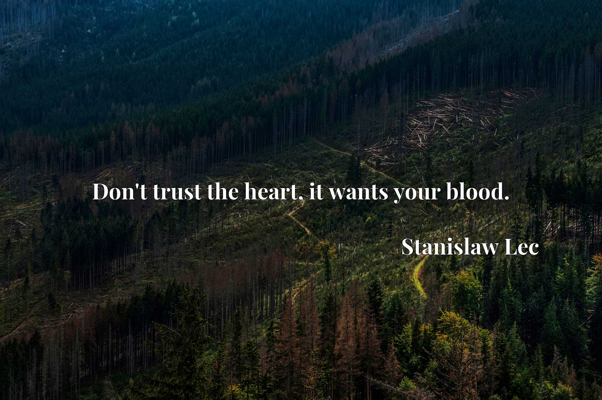 Quote Picture :Don't trust the heart, it wants your blood.