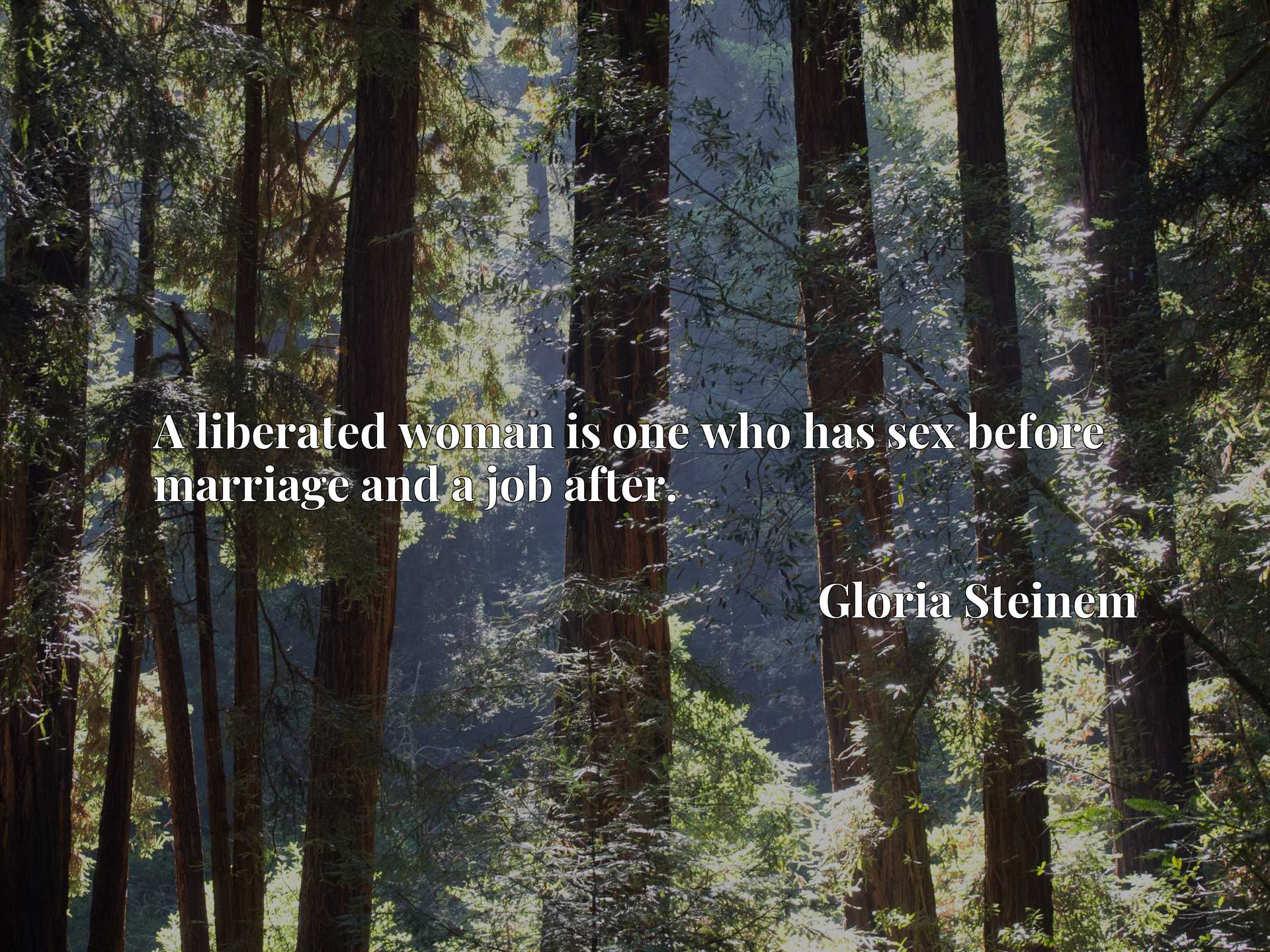 Quote Picture :A liberated woman is one who has sex before marriage and a job after.