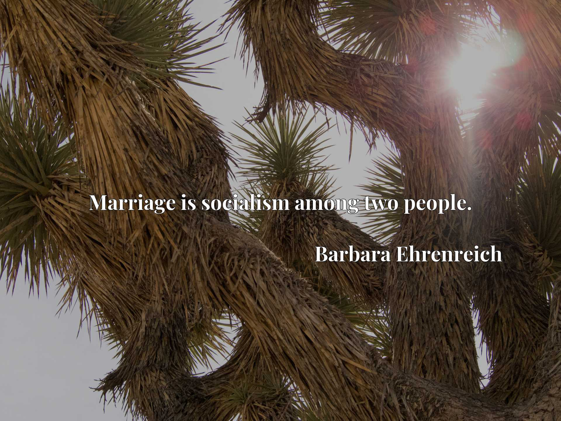 Quote Picture :Marriage is socialism among two people.