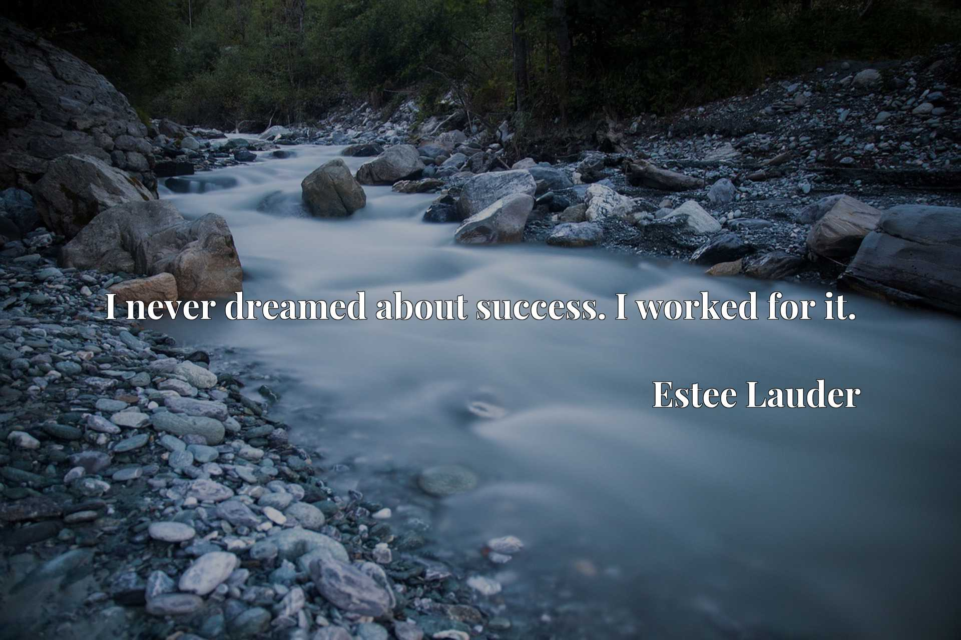 Quote Picture :I never dreamed about success. I worked for it.