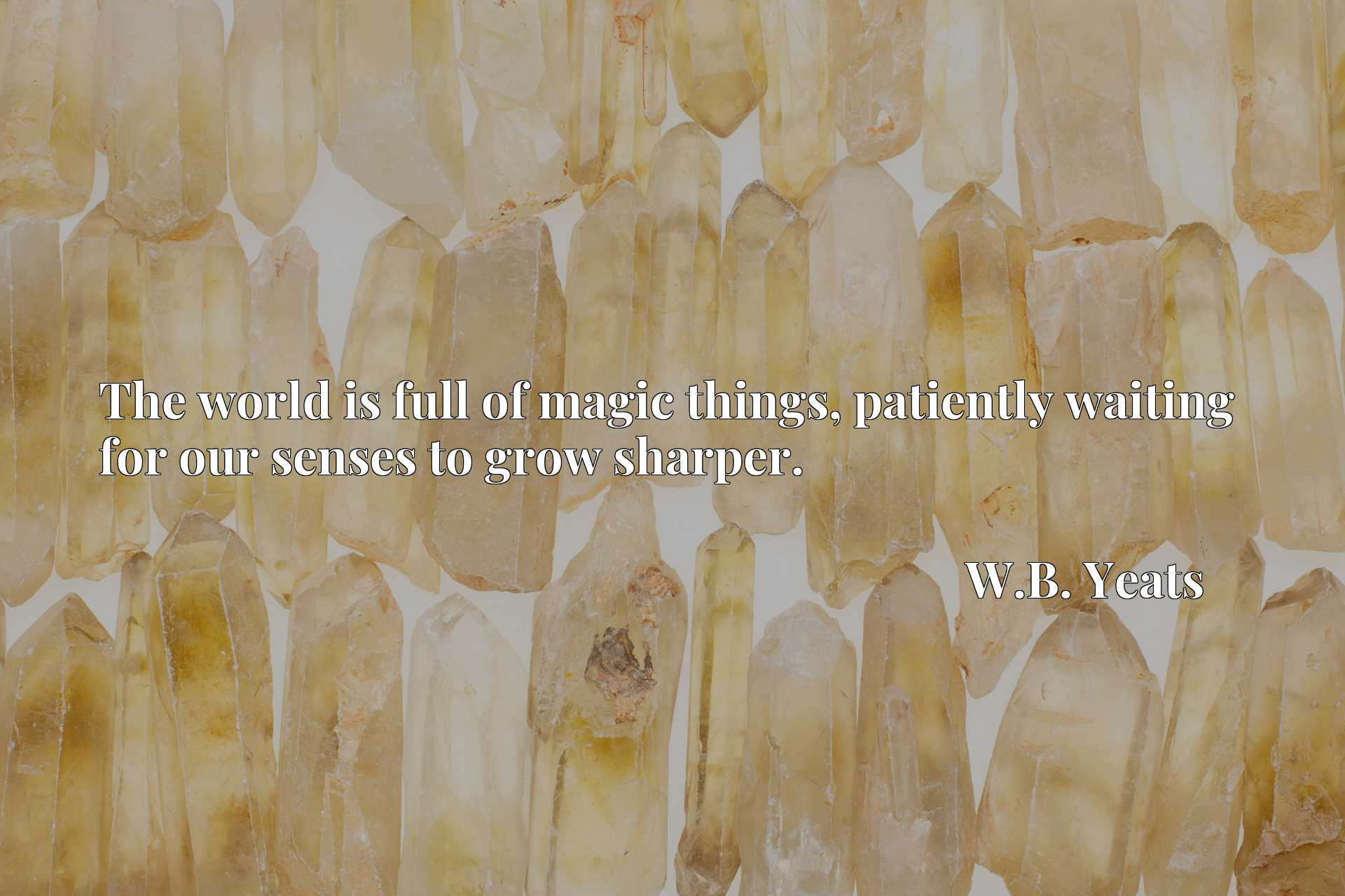 Quote Picture :The world is full of magic things, patiently waiting for our senses to grow sharper.