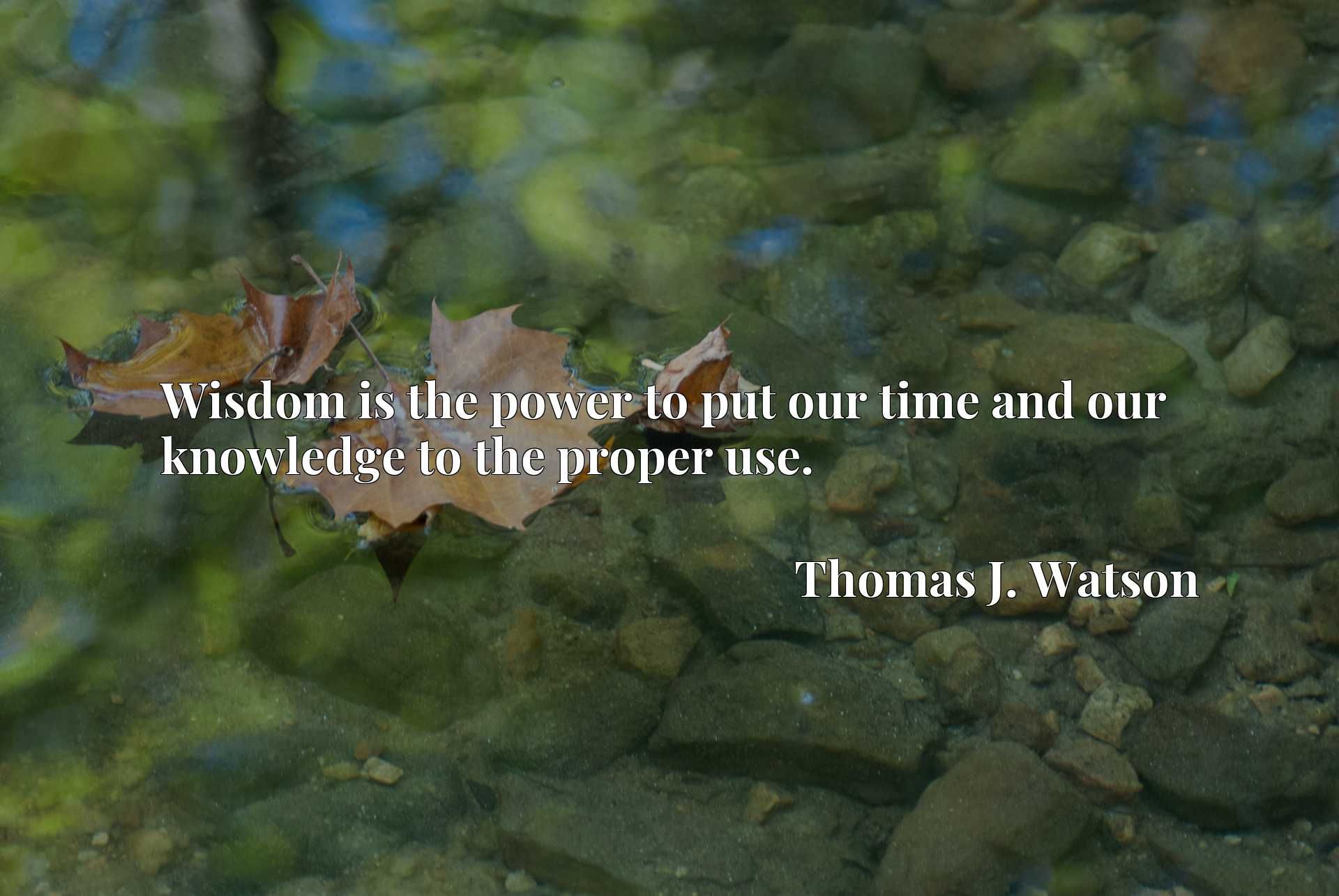 Quote Picture :Wisdom is the power to put our time and our knowledge to the proper use.