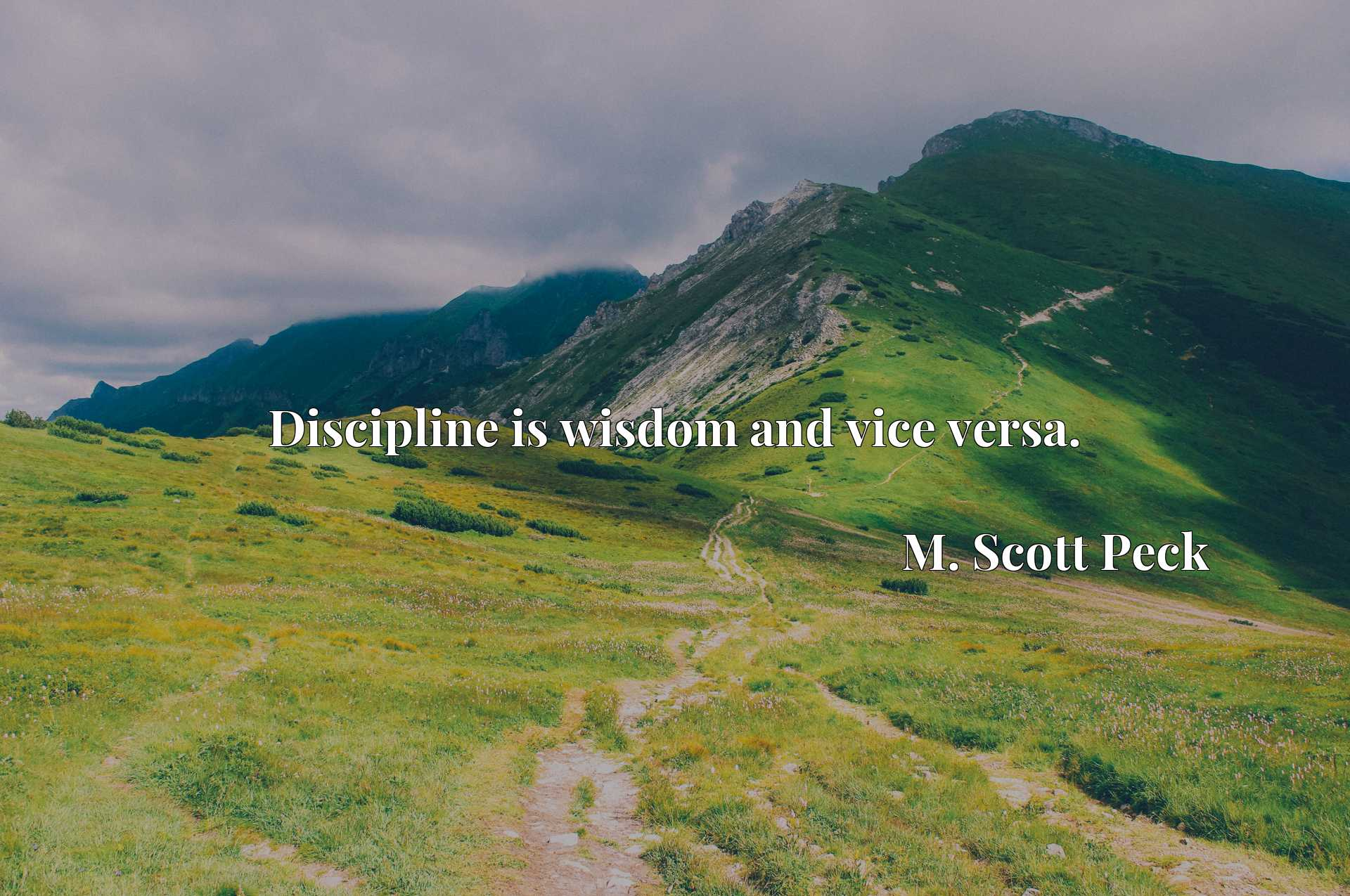 Quote Picture :Discipline is wisdom and vice versa.