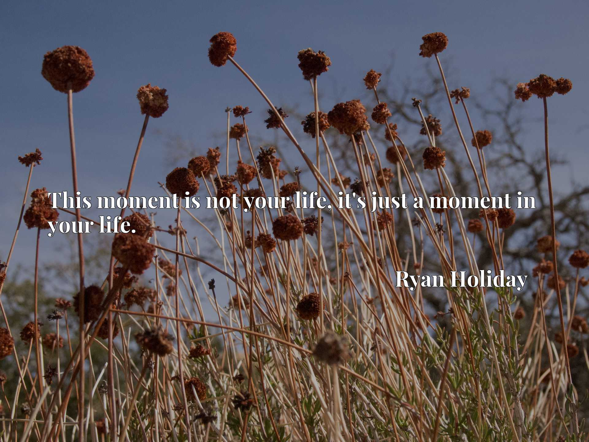 Quote Picture :This moment is not your life, it's just a moment in your life.